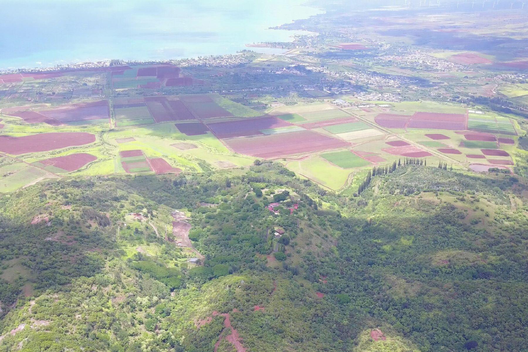 Additional photo for property listing at Ample Acreage 67-290 Farrington Hwy #5 Waialua, Hawaii 96791 United States