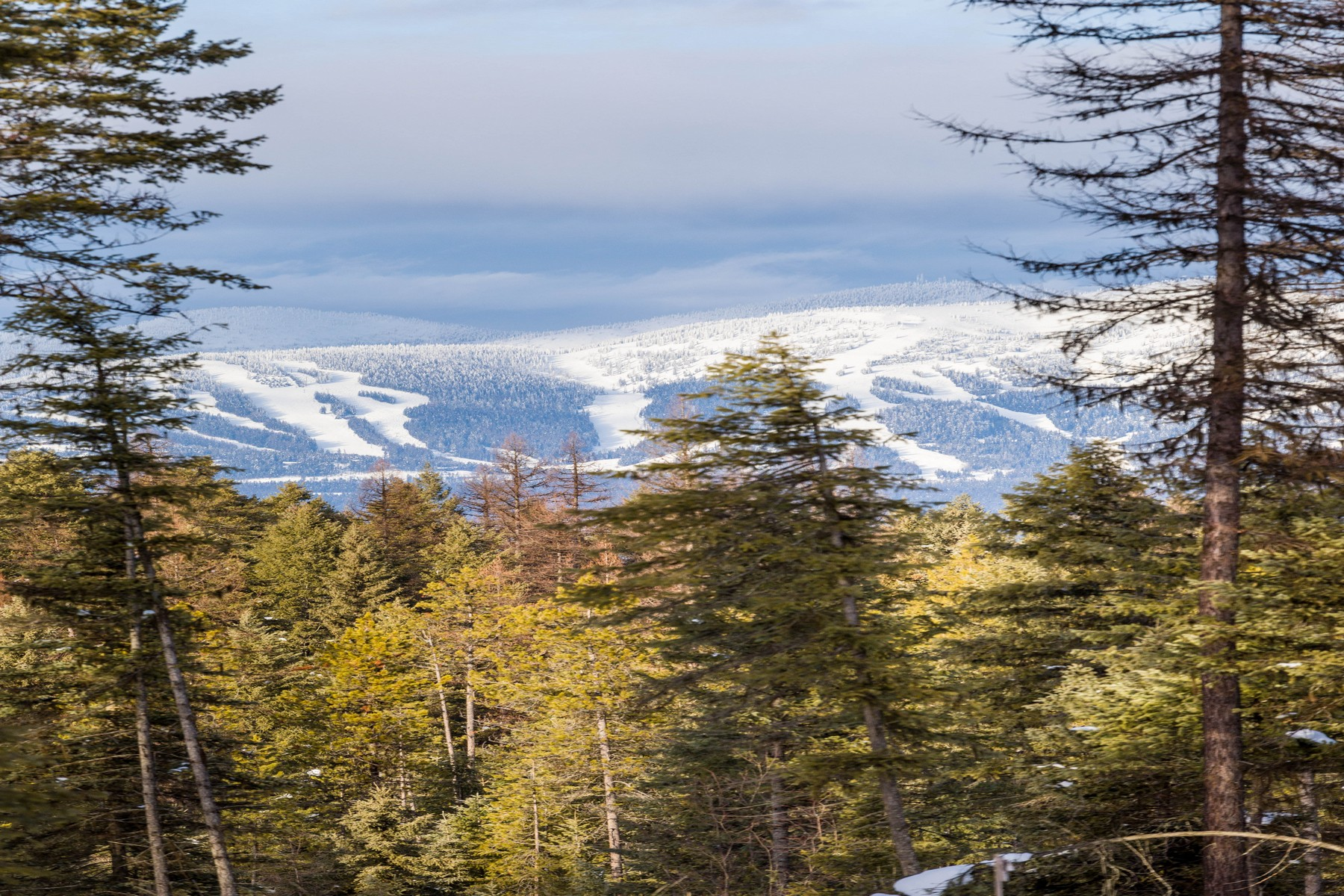 Additional photo for property listing at 1085 Whitefish Village Drive, Lot 16, Whitefish, M 1085  Whitefish Village Dr Lot 16 Whitefish, Montana 59937 United States