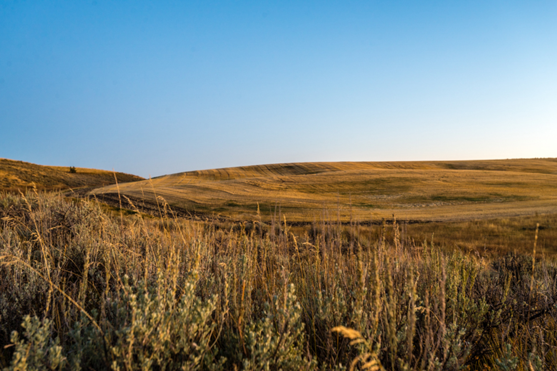 Land for Sale at Spring Hollow: Recreation Ranch Site 2115 Moose Path Way Tetonia, Idaho 83452 United States