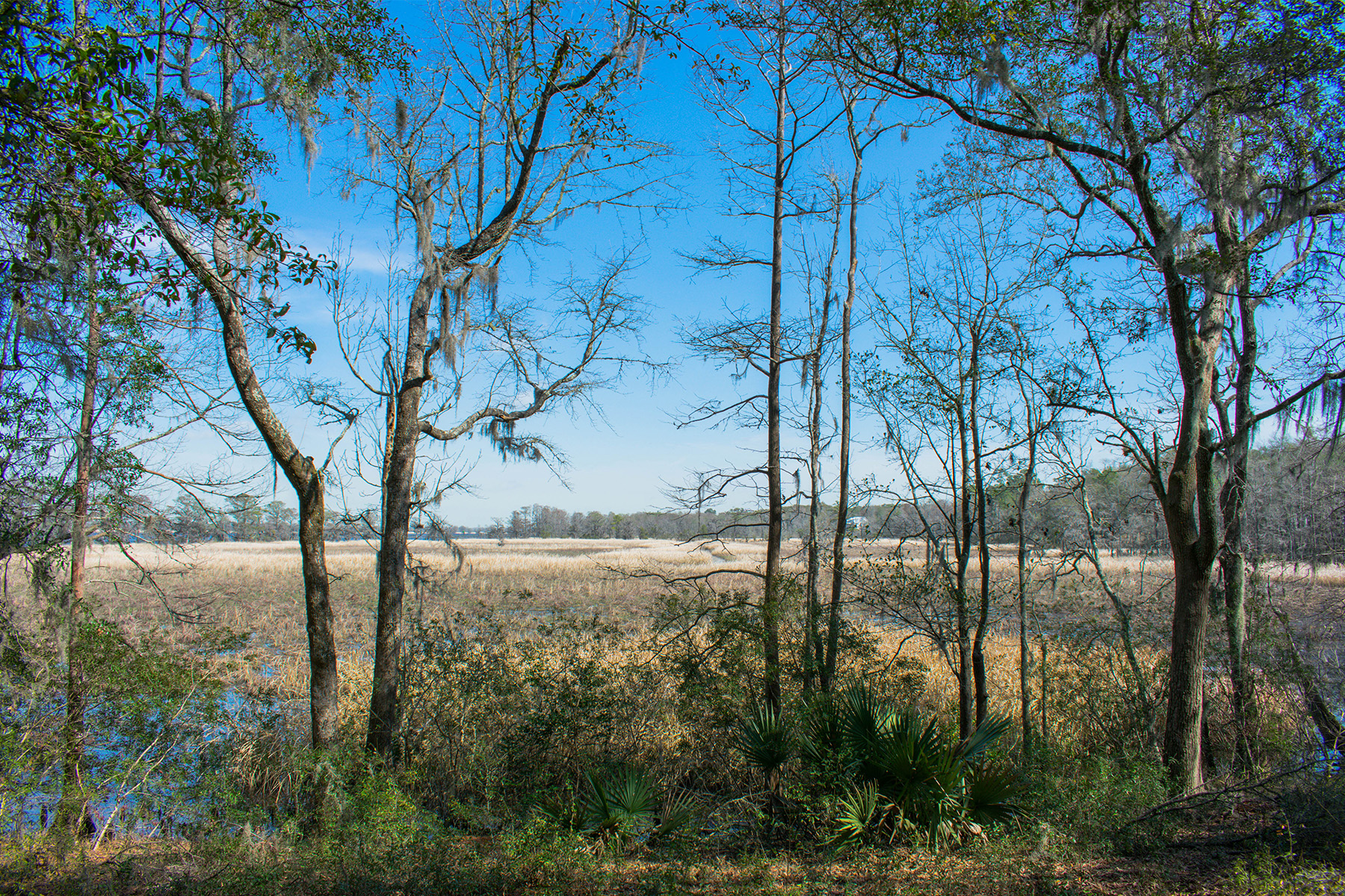 Additional photo for property listing at LOT 4 Prince George River, Pawleys Island, SC 2958 LOT 4  Prince George River Pawleys Island, Carolina Del Sur 29585 Estados Unidos