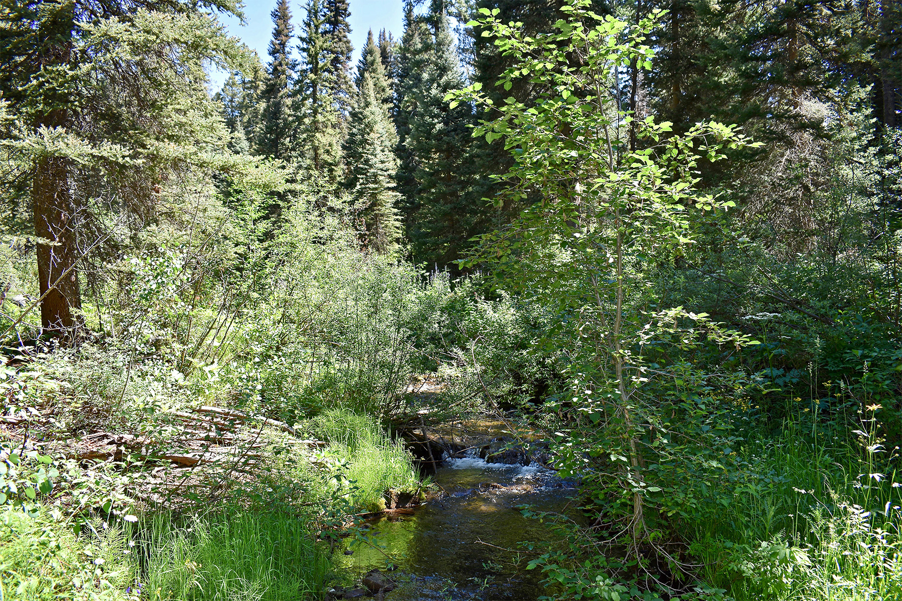 Additional photo for property listing at Windom Ridge at Windom Ranch TBD N Windom Way Windom Ridge at Windom Ranch Durango, Colorado 81301 Estados Unidos