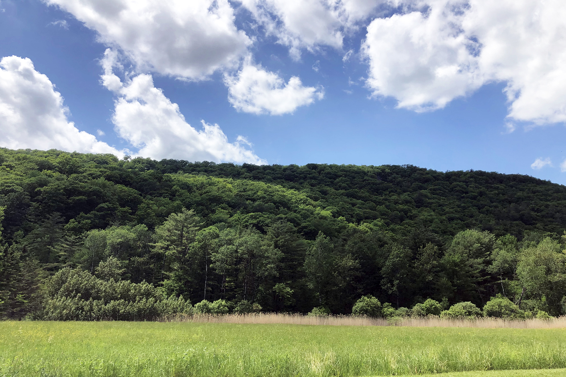 Land for Sale at Build Your Proctor Dreamhouse 85 West Street Proctor, Vermont 05765 United States