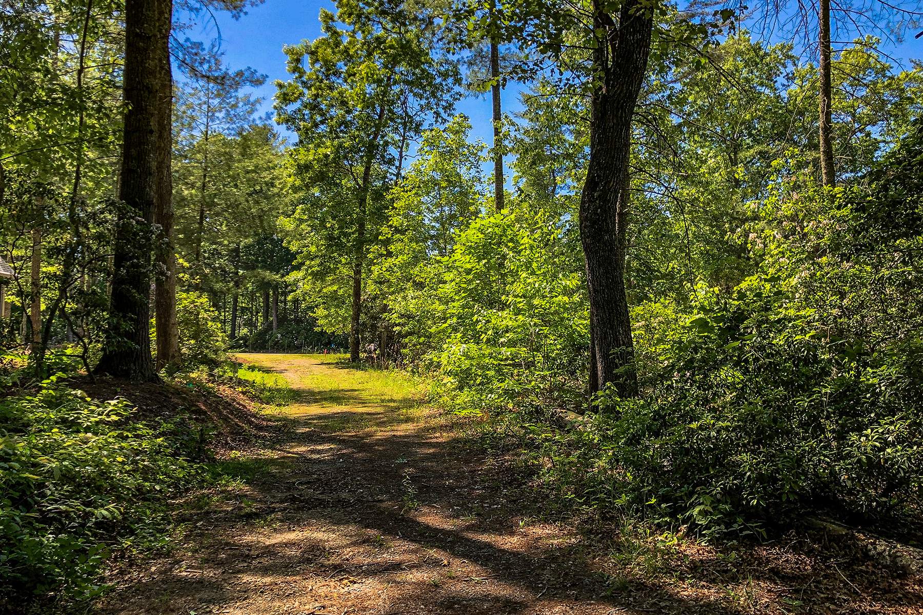 Land for Active at BRIDGEWATER 45 Jake Ridge , 30 Fletcher, North Carolina 28752 United States