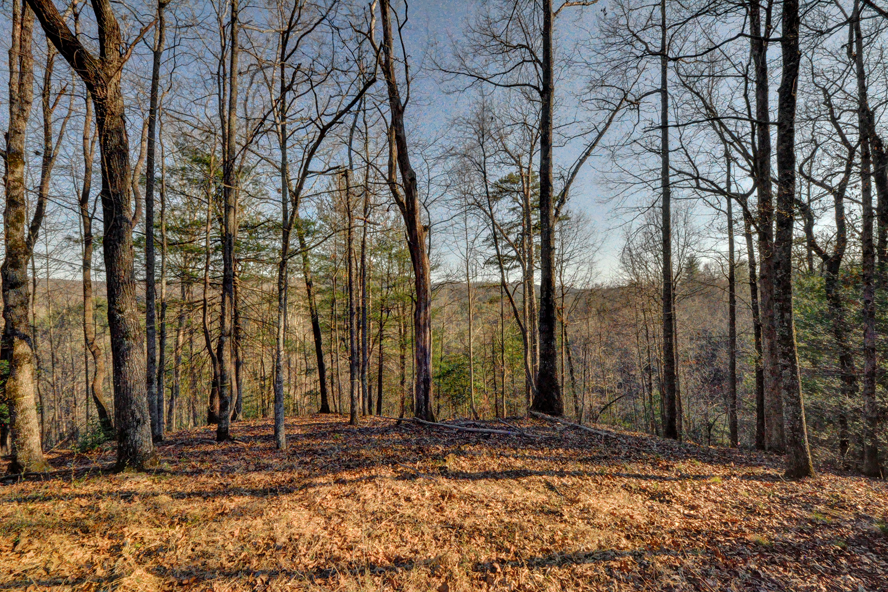 Land for Sale at OLETA FALLS 110 Stone Valley Way , 20 Hendersonville, North Carolina 28792 United States