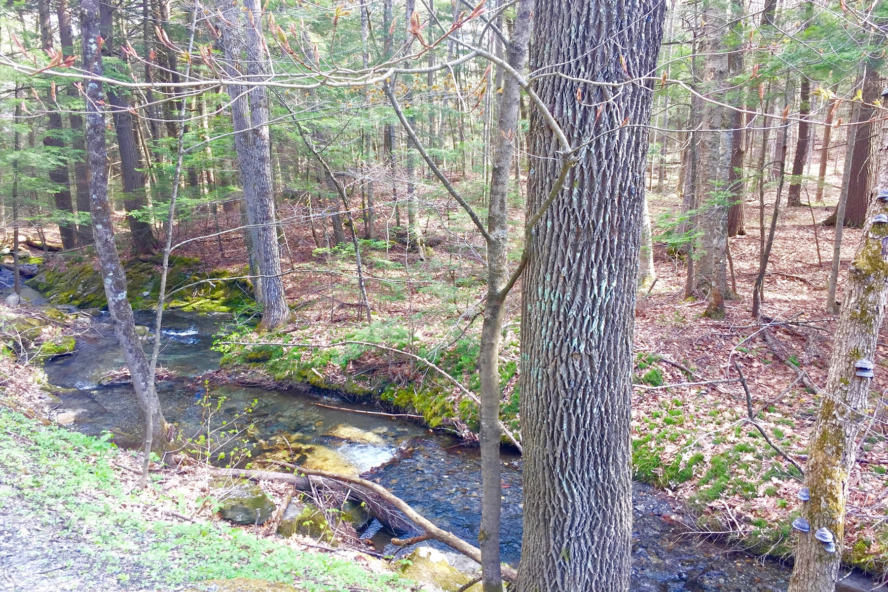 Property for Sale at Super Location 567 Silver Hill Road West Windsor, Vermont 05089 United States