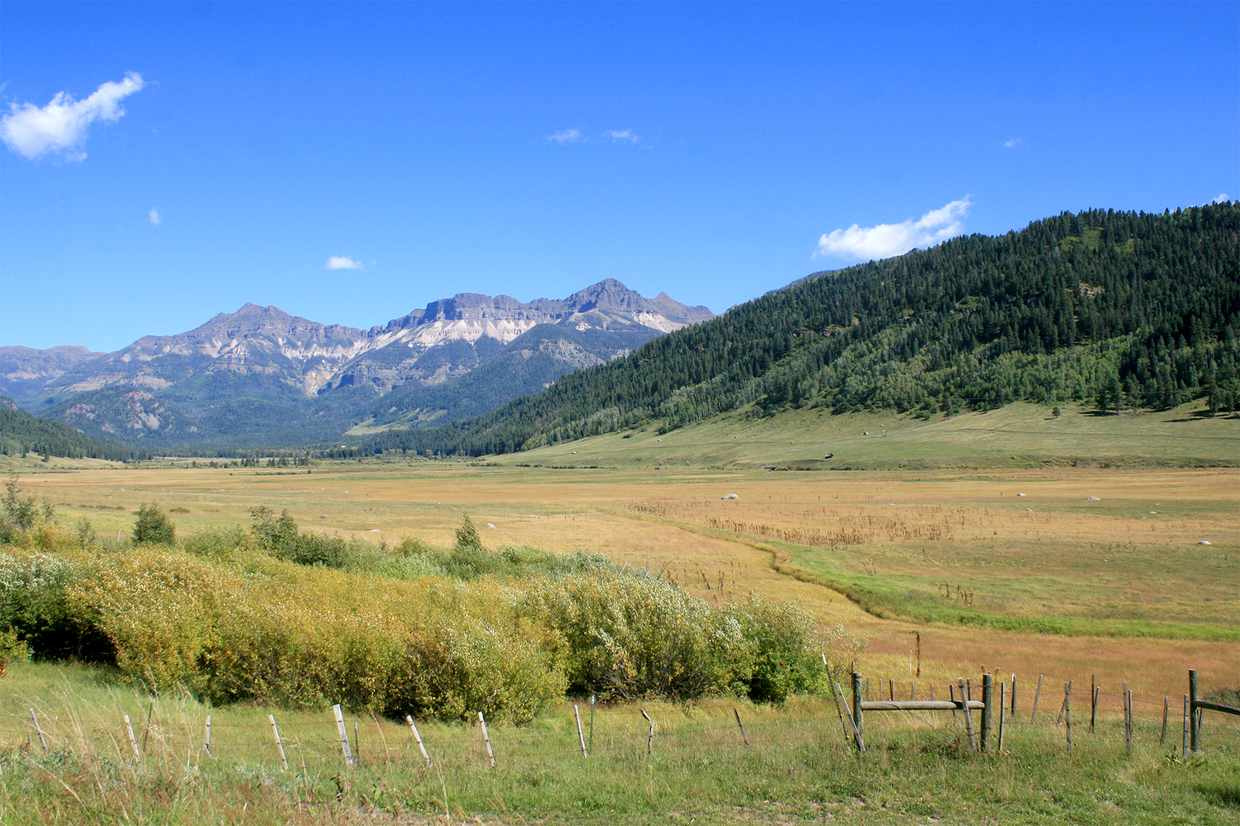 Additional photo for property listing at Weminuche Ranch TBD Forest Service Road 602 Pagosa Springs, Colorado 81147 United States