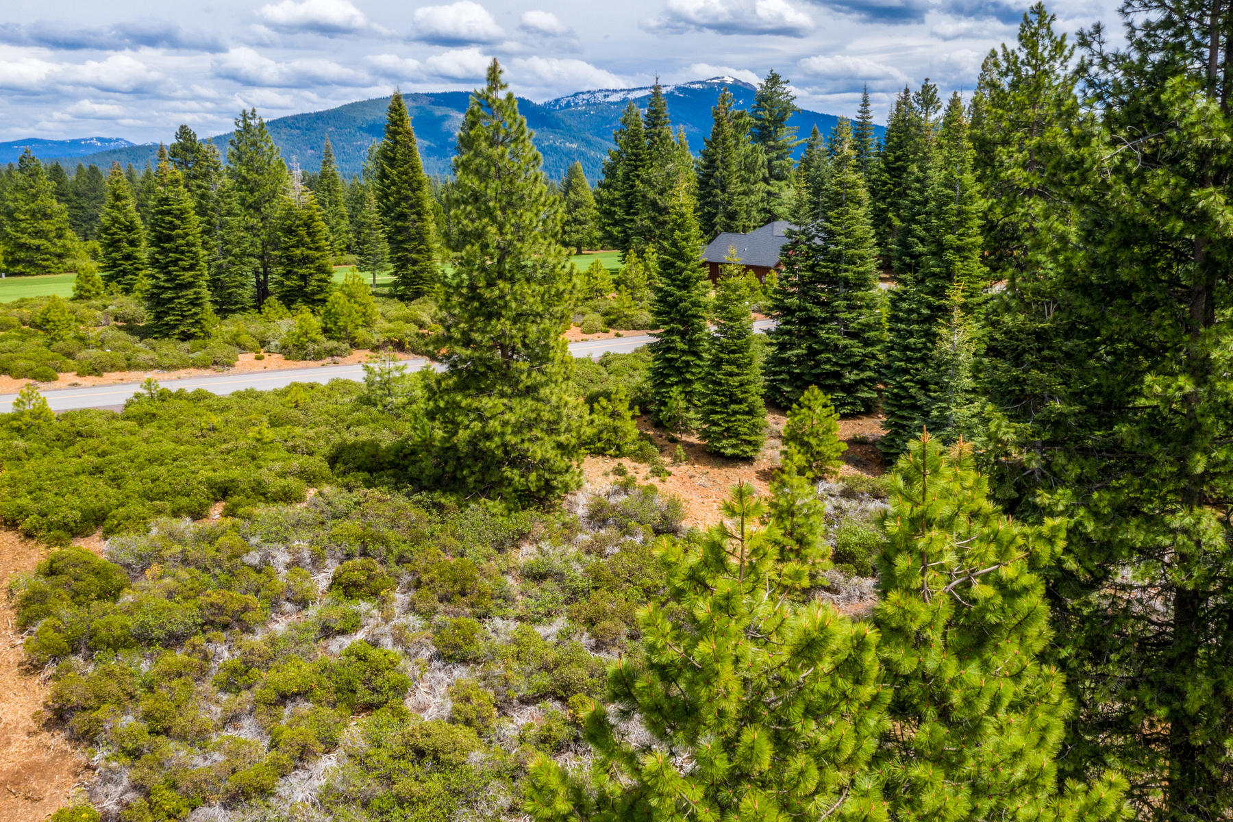Additional photo for property listing at 196 Dinsmore Drive, Lake Almanor, CA 96137 196 Dinsmore Drive Lake Almanor, California 96137 United States