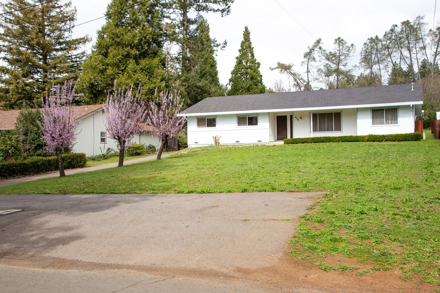 Single Family Homes para Venda às Howell Mountain Ranch 440 Newton Way, Angwin, Califórnia 94508 Estados Unidos
