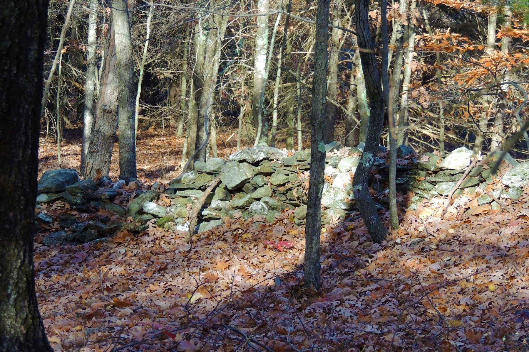 Additional photo for property listing at Sylvan Setting County Route 11 Copake, New York 12523 United States