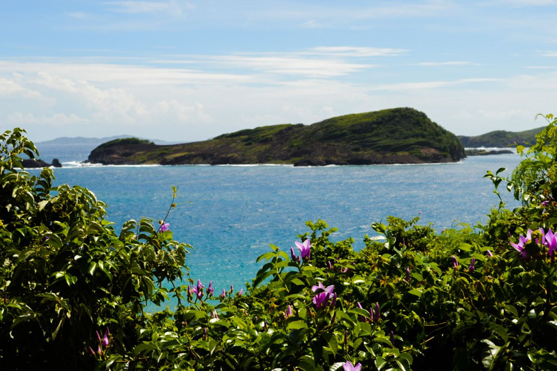 Private Island for Sale at Petit Nevis - Private Island Petit Nevis, Saint Vincent And The Grenadines