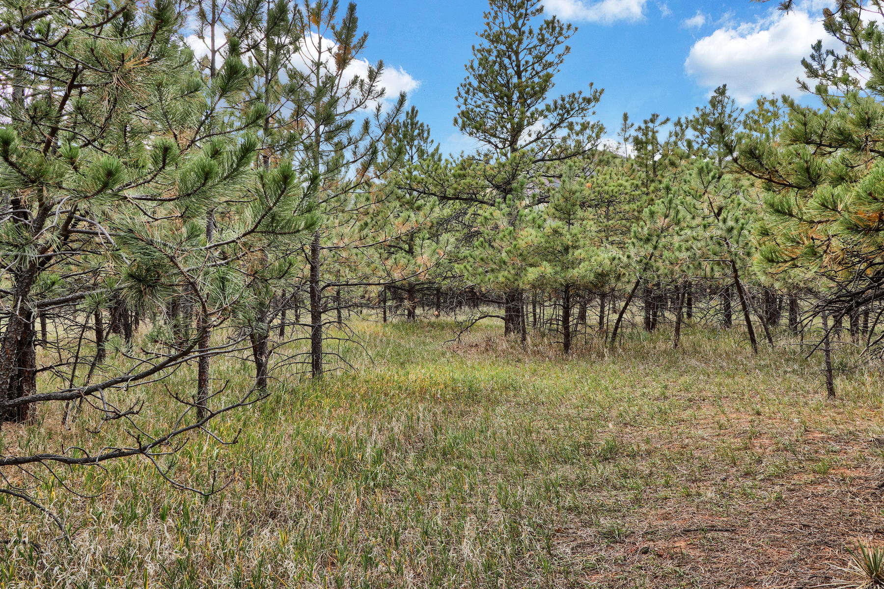 Land for Active at Lot 6 Stone View Rd Lot 6 Stone View Rd Monument, Colorado 80132 United States
