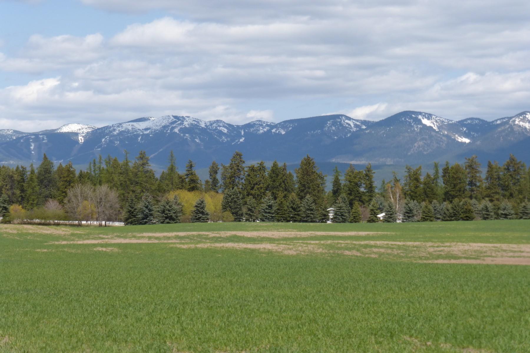 土地,用地 为 销售 在 Nhn Whitefish Stage Rd , Whitefish, MT 59937 Nhn Whitefish Stage Rd 怀特菲什, 蒙大拿州 59937 美国