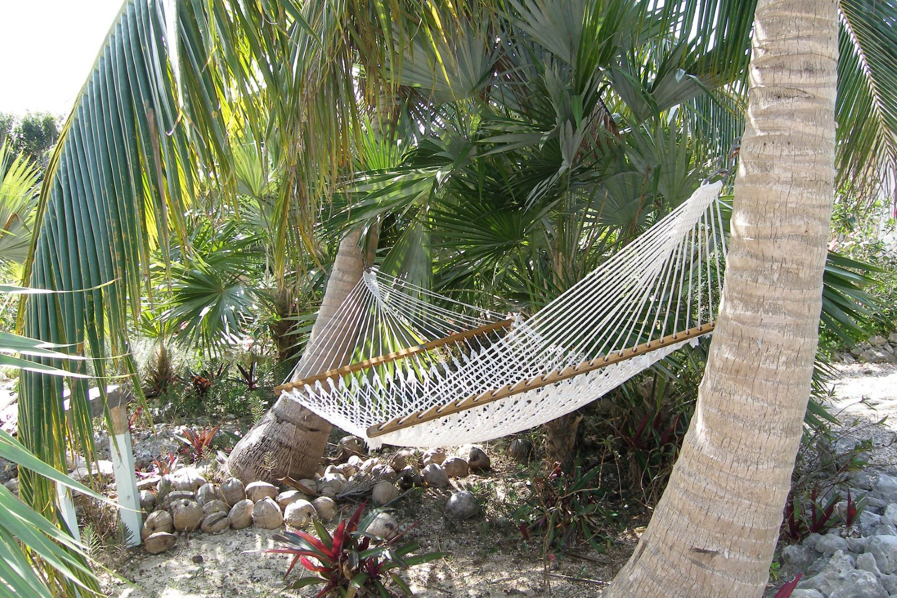 Additional photo for property listing at Pirate's Venture Palmetto Shores, Palmetto Point, Eleuthera Bahamas