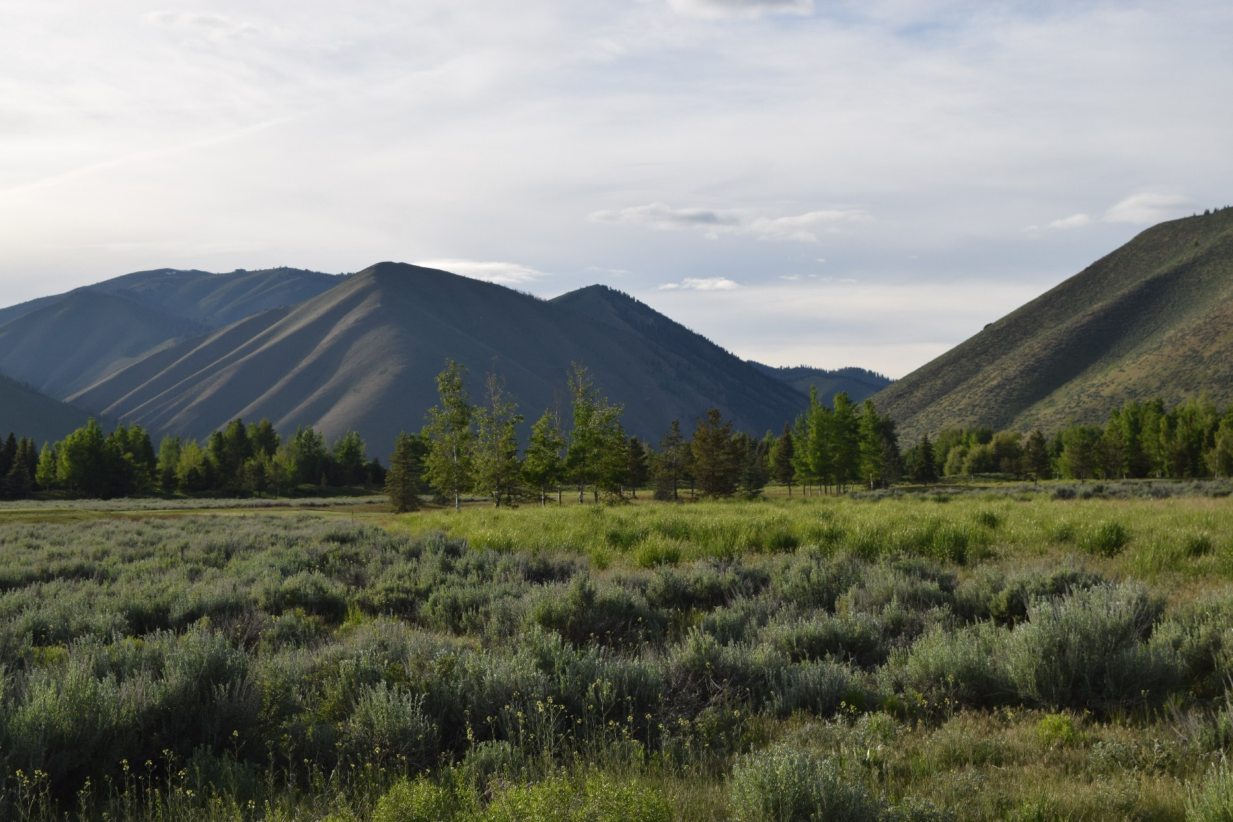 Land for Sale at Panoramic Mountain Views 15 Copper Creek Hailey, Idaho 83333 United States
