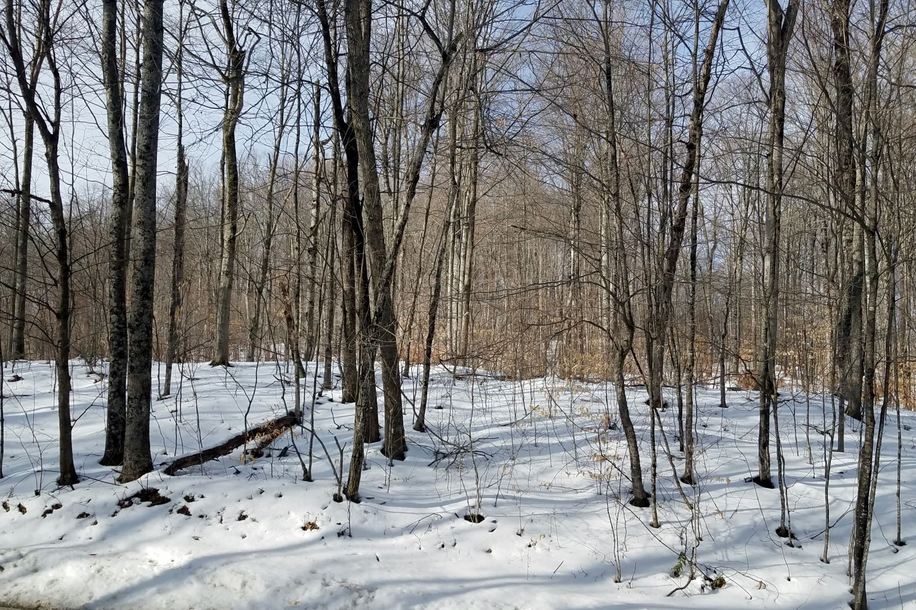Land for Sale at Eight Acres in Hartland 240 Advent Hill Road Hartland, Vermont 05048 United States