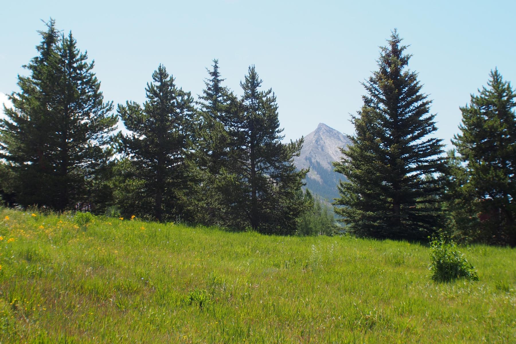 Земля для того Продажа на Perfect Location with Great Views 870 Gothic Road, Mount Crested Butte, Колорадо, 81225 Соединенные Штаты