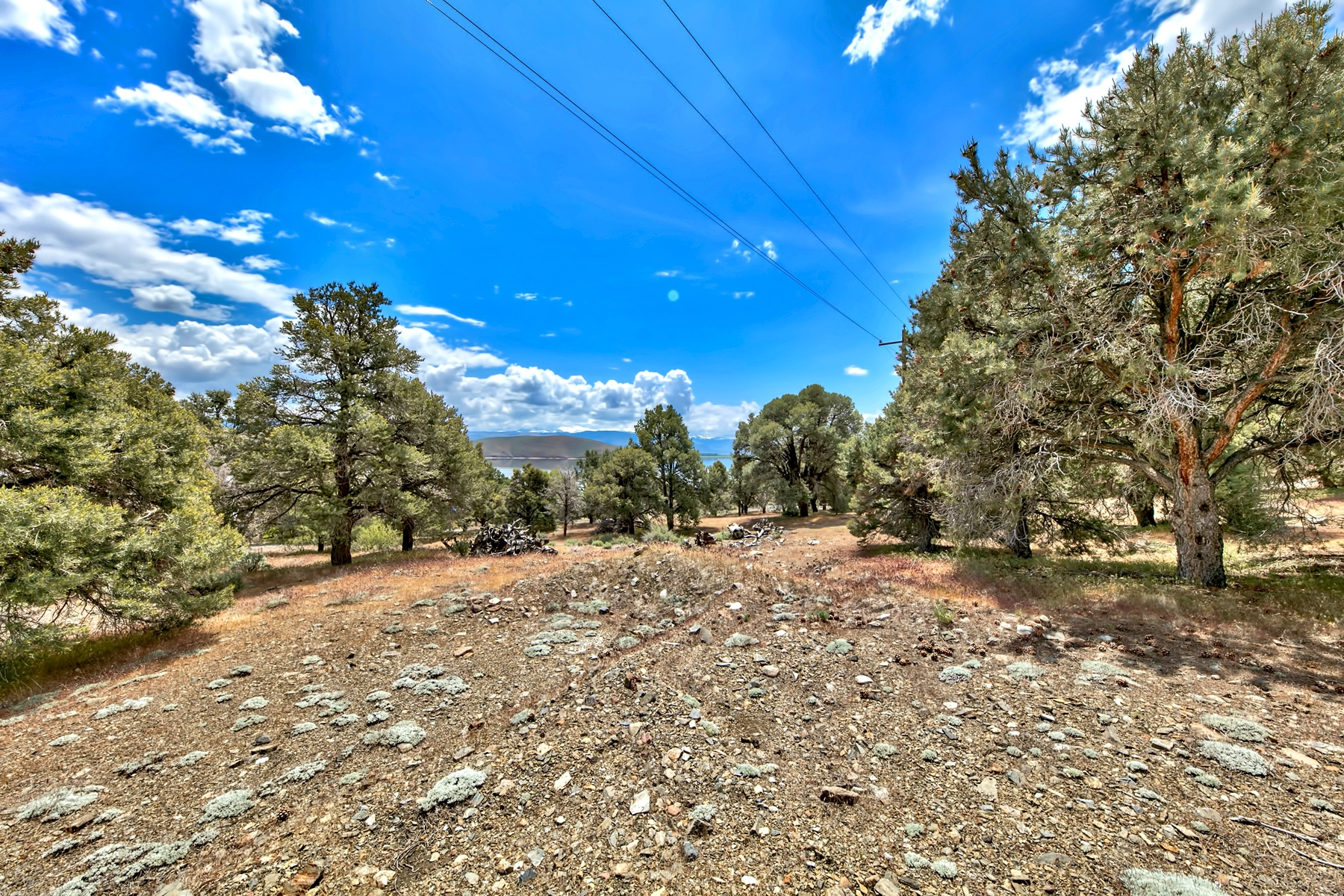 Additional photo for property listing at 2059 Hwy 395 South, Garnerville, NV 89410 2059 S HWY 395 Gardnerville, Nevada 89410 United States