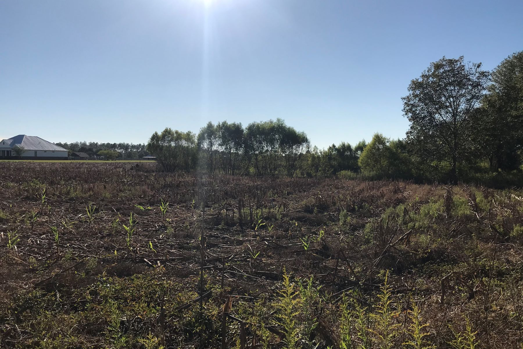土地,用地 为 销售 在 Langford Lot and Land Langford Road Fairhope, 阿拉巴马州 36532 美国
