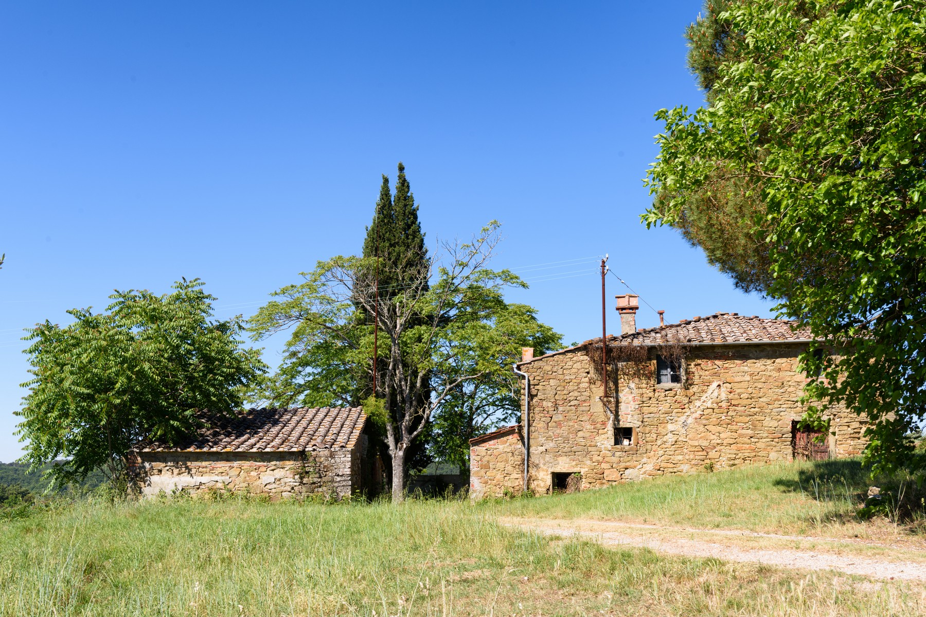Single Family Home for Sale at Tuscan farmhouse with vineyards and olive groves Campanaio Monte San Savino, 52048 Italy