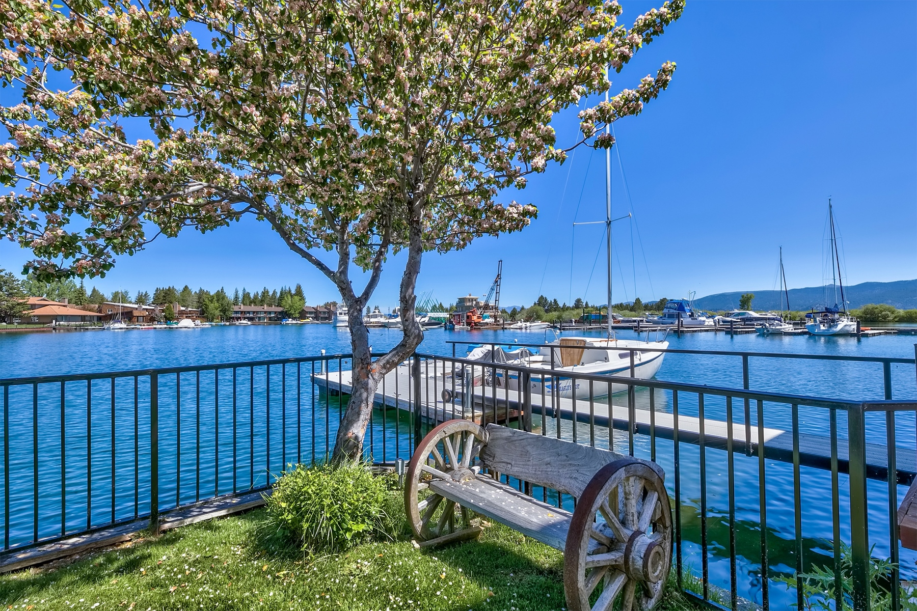 Condominium for Active at 439 Ala Wai #135 Blvd, South Lake Tahoe CA 96150 439 Ala Wai #135 Blvd South Lake Tahoe, California 96150 United States
