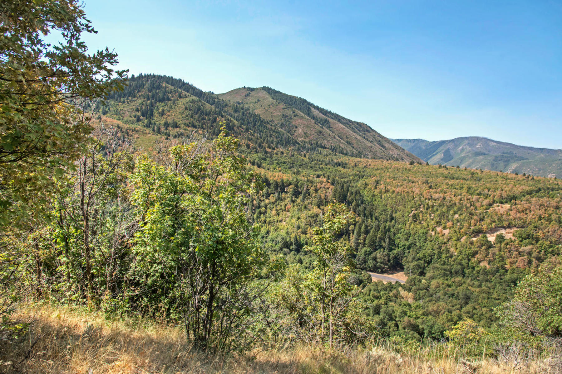 Land for Sale at Simply Awesome 1280 S Eagle Nest Dr Lot 72 Woodland Hills, Utah 84653 United States