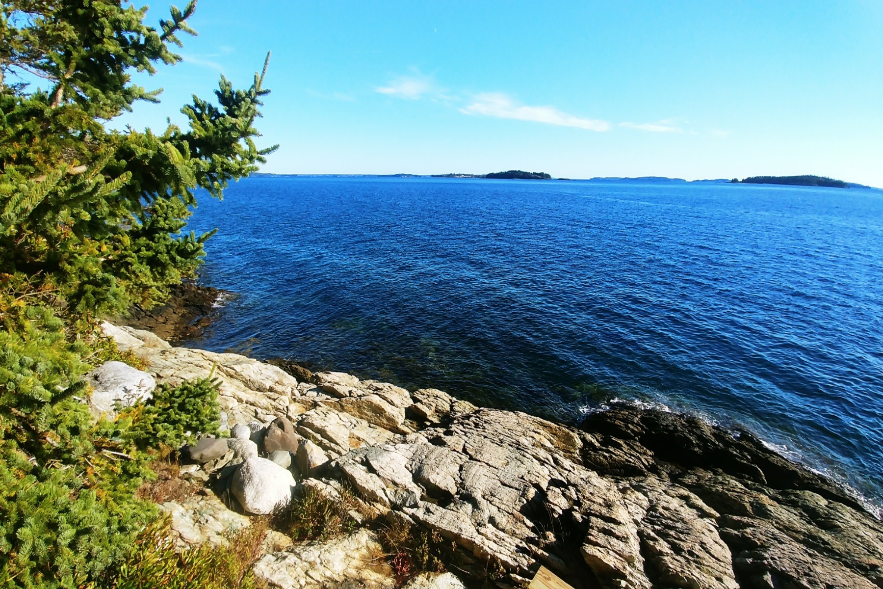 Single Family Home for Sale at 56 Point Road Brooksville, Maine, 04617 United States
