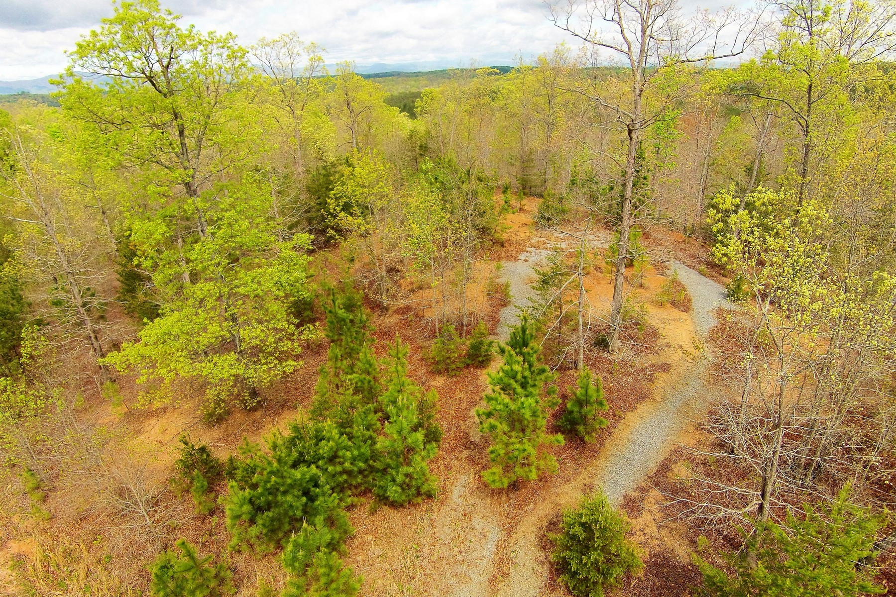 Land for Sale at Lot #129 High Ridge Road in Green River Highlands 129 High Ridge Road Rutherfordton, North Carolina 28139 United States