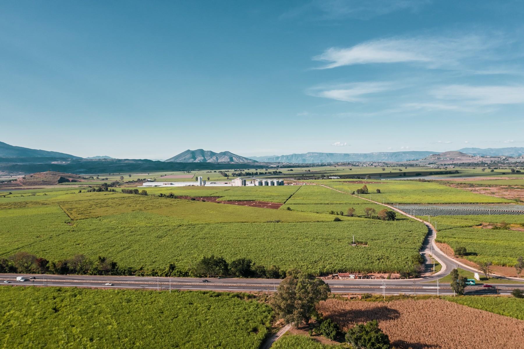 土地 為 出售 在 Ranch at El Arenal, Jalisco El Arenal, Jalisco Rancho El Guayabo El Arenal, 墨西哥的城市 45368 墨西哥
