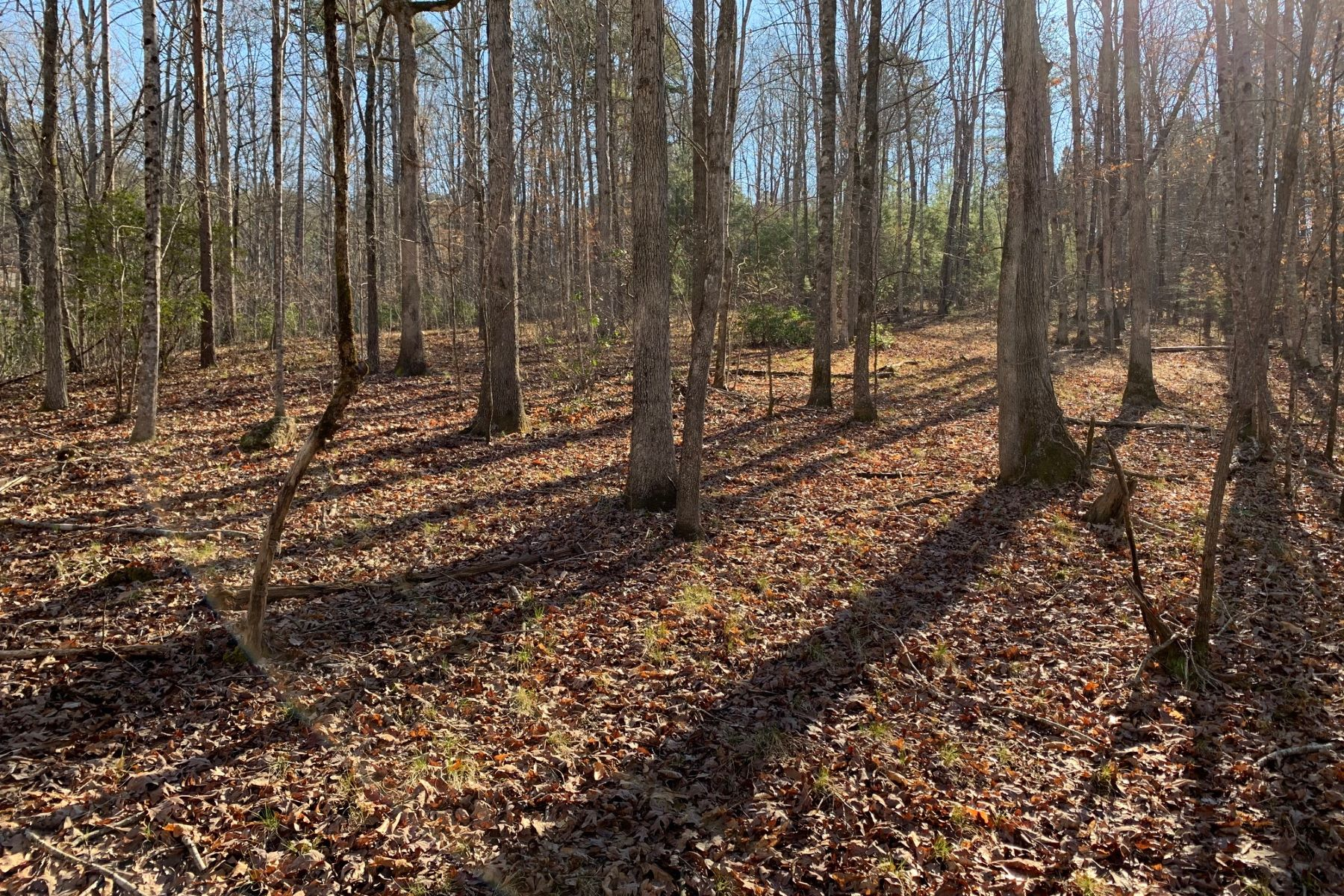Land for Active at Privacy & Lovely Streams CKS 1-12 118 Edgestone Way Six Mile, South Carolina 29682 United States