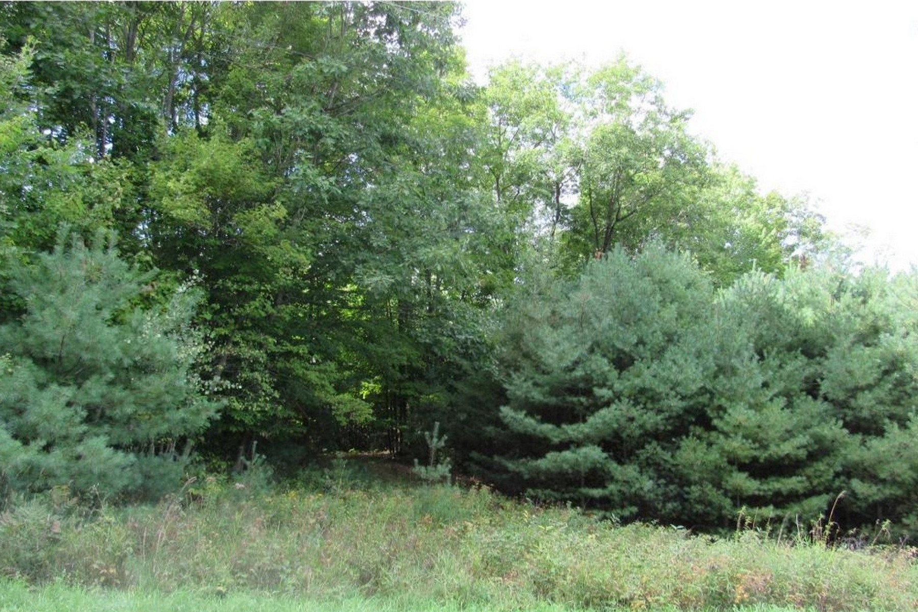 Terreno por un Venta en Five acre lot in Haverhill 110 Lily Lane Haverhill, Nueva Hampshire 03774 Estados Unidos