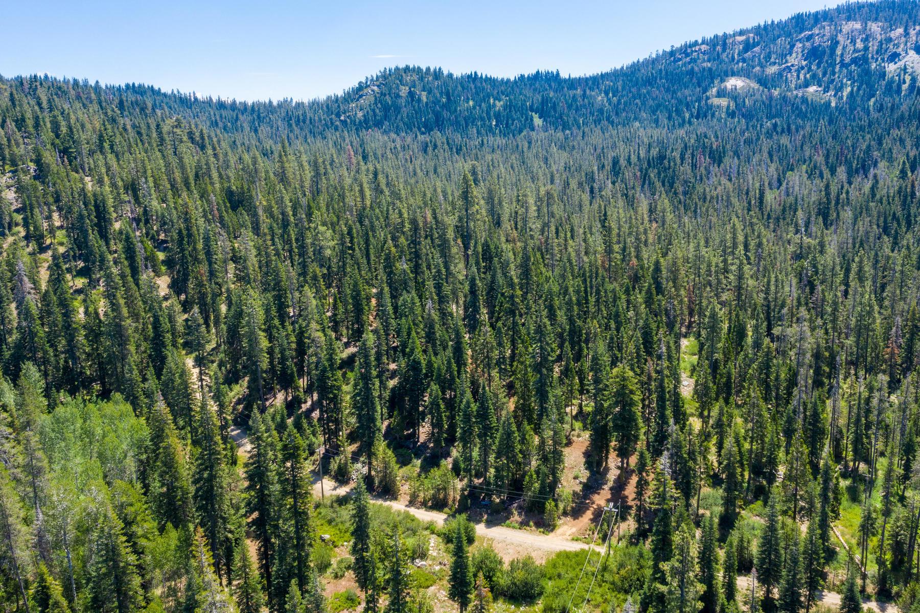 Additional photo for property listing at 258 Bucks Meadow Drive, Bucks Lake, CA 95971 258 Bucks Meadow Drive Bucks Lake, California 95971 United States