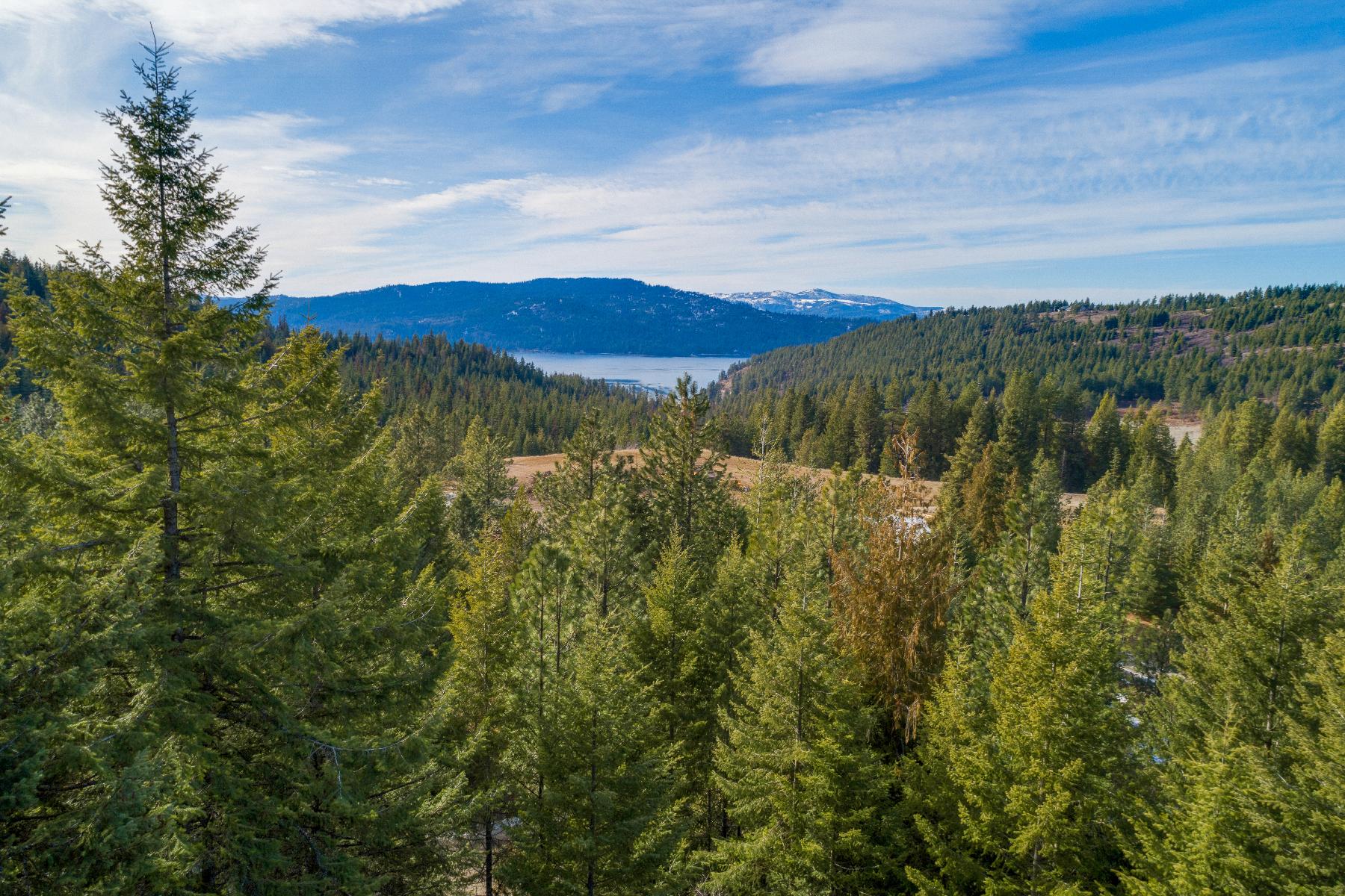 Terreno por un Venta en 34 Treed Acres with Lake Views 0 Carlin Bay Rd. Harrison, Idaho 83833 Estados Unidos