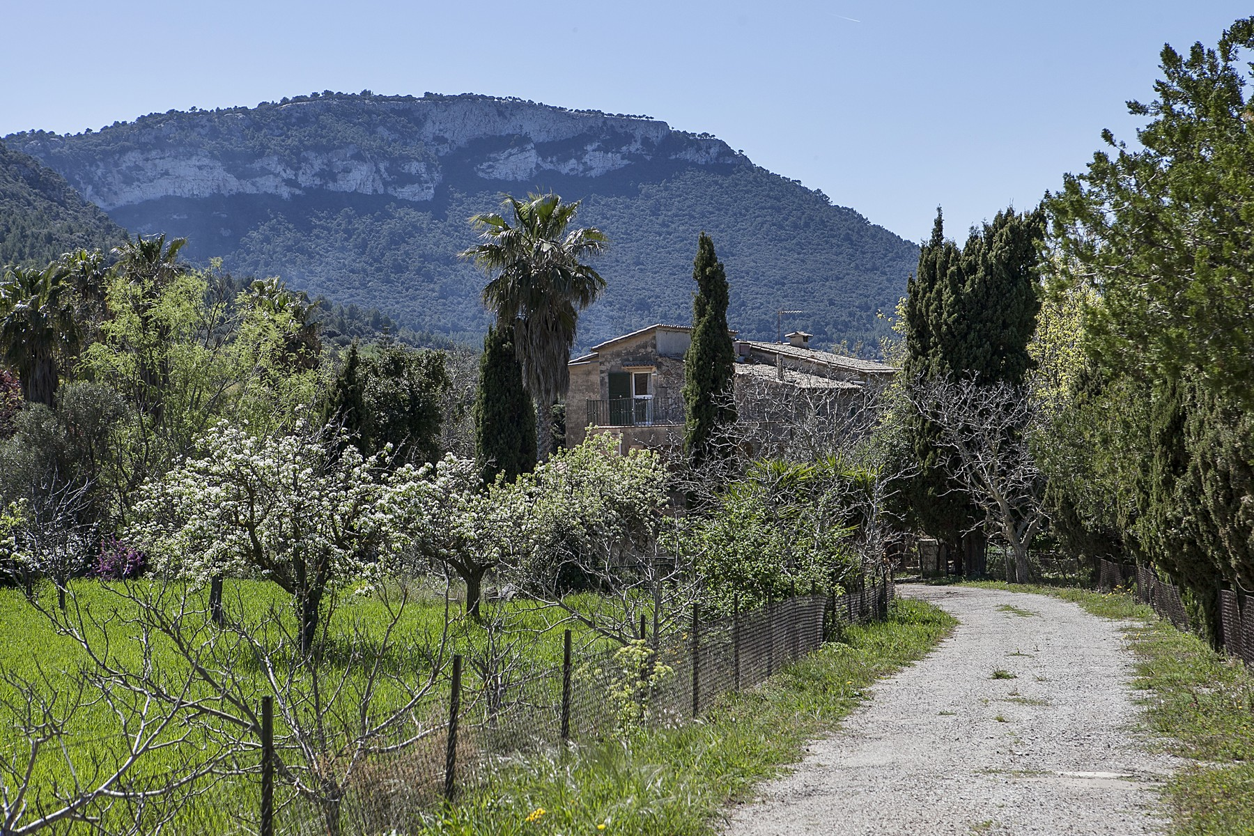 Single Family Home for Sale at Country Estate to renovate in Valldemossa Valldemossa, Balearic Islands Spain