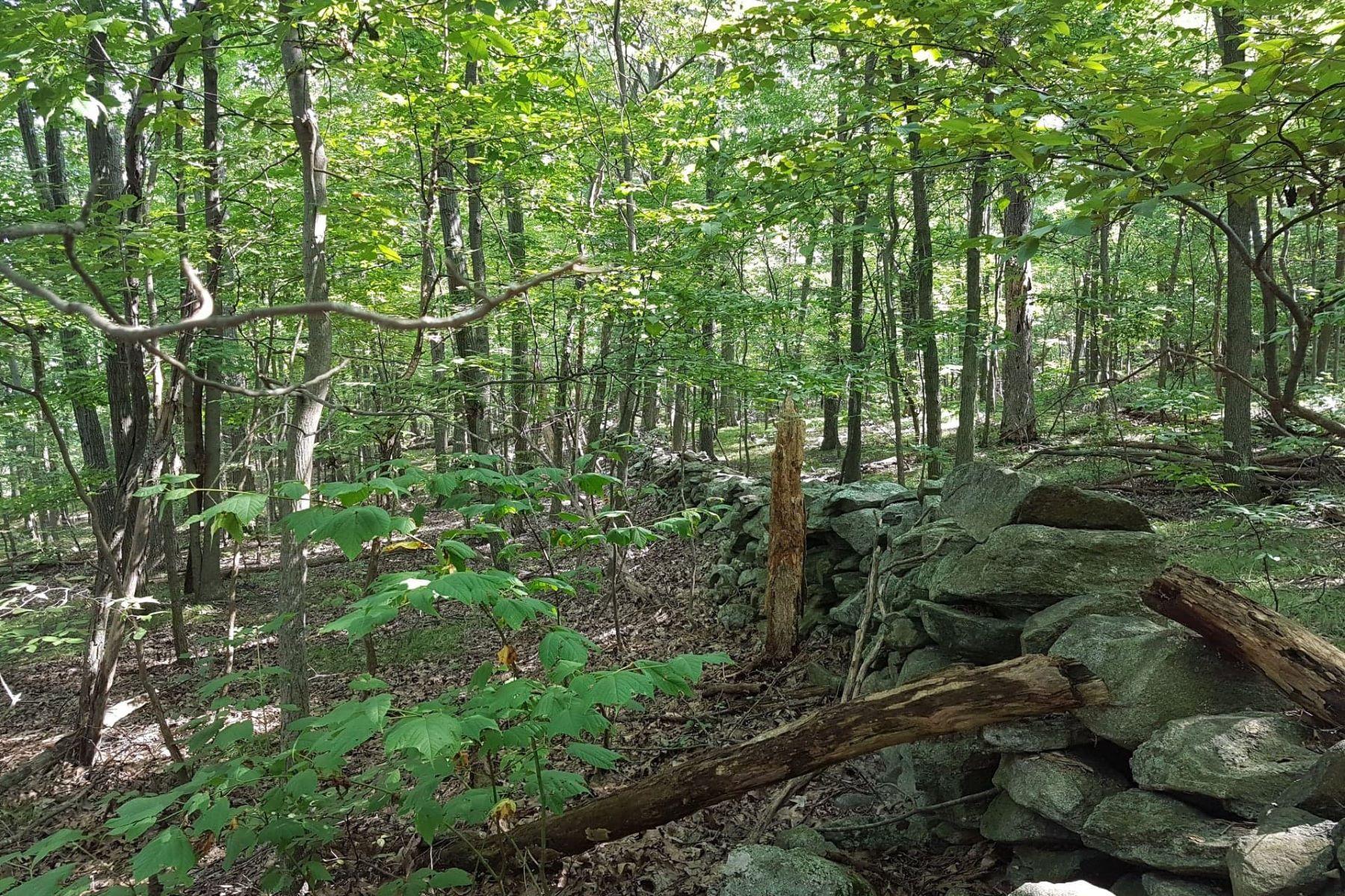 Земля для того Продажа на Sanctuary with Convenience 390 Hosner Mountain Rd East Fishkill, Нью-Йорк 12582 Соединенные Штаты