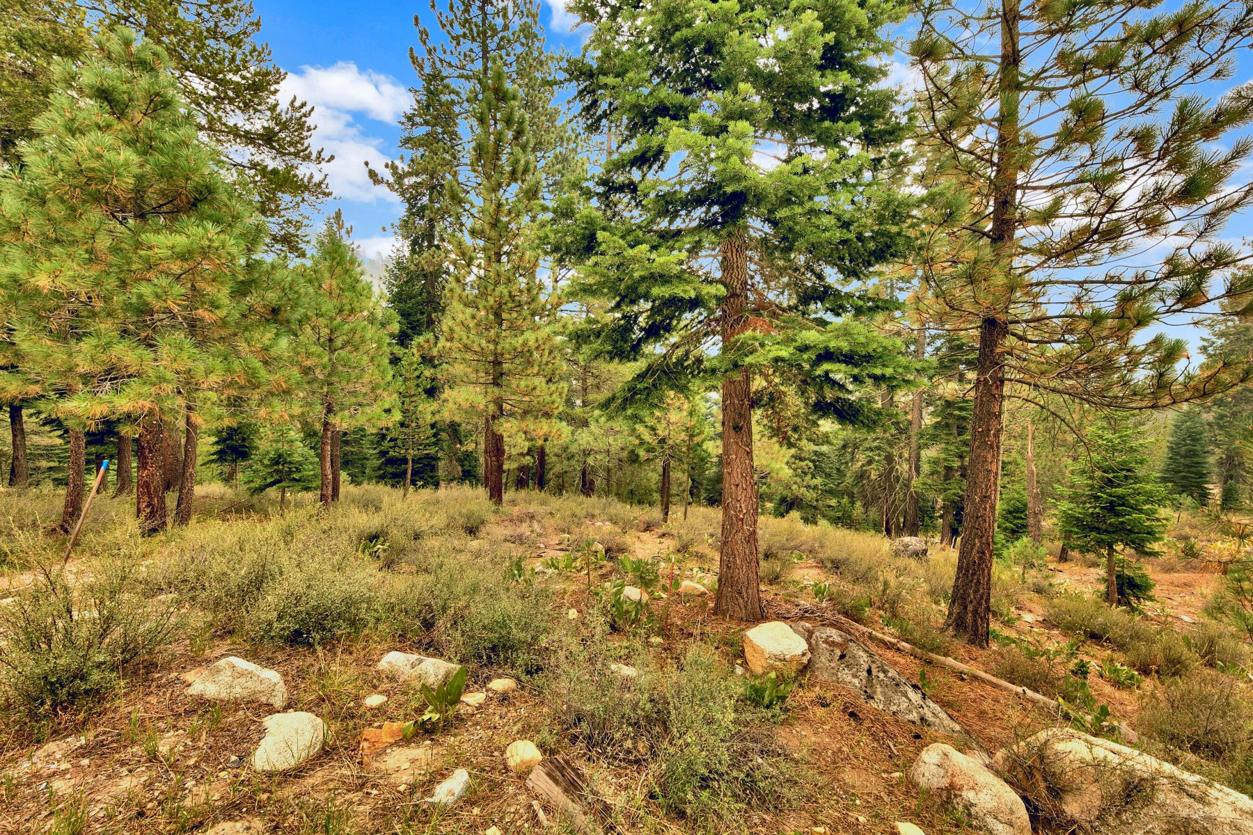 Additional photo for property listing at Create your Magic in the Mountains 142 Rock Garden Court Olympic Valley, California 96146 United States