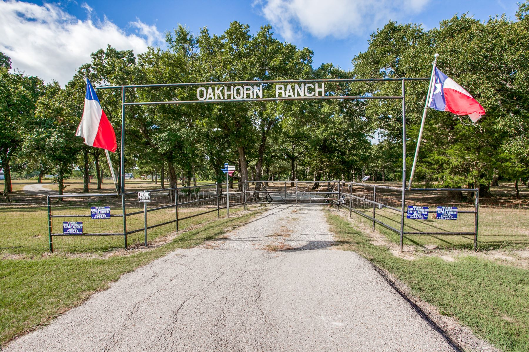 Farm / Ranch / Plantation for Active at Oak Horn Ranch 58 Acres 10035 W. FM 744 Barry, Texas 75102 United States
