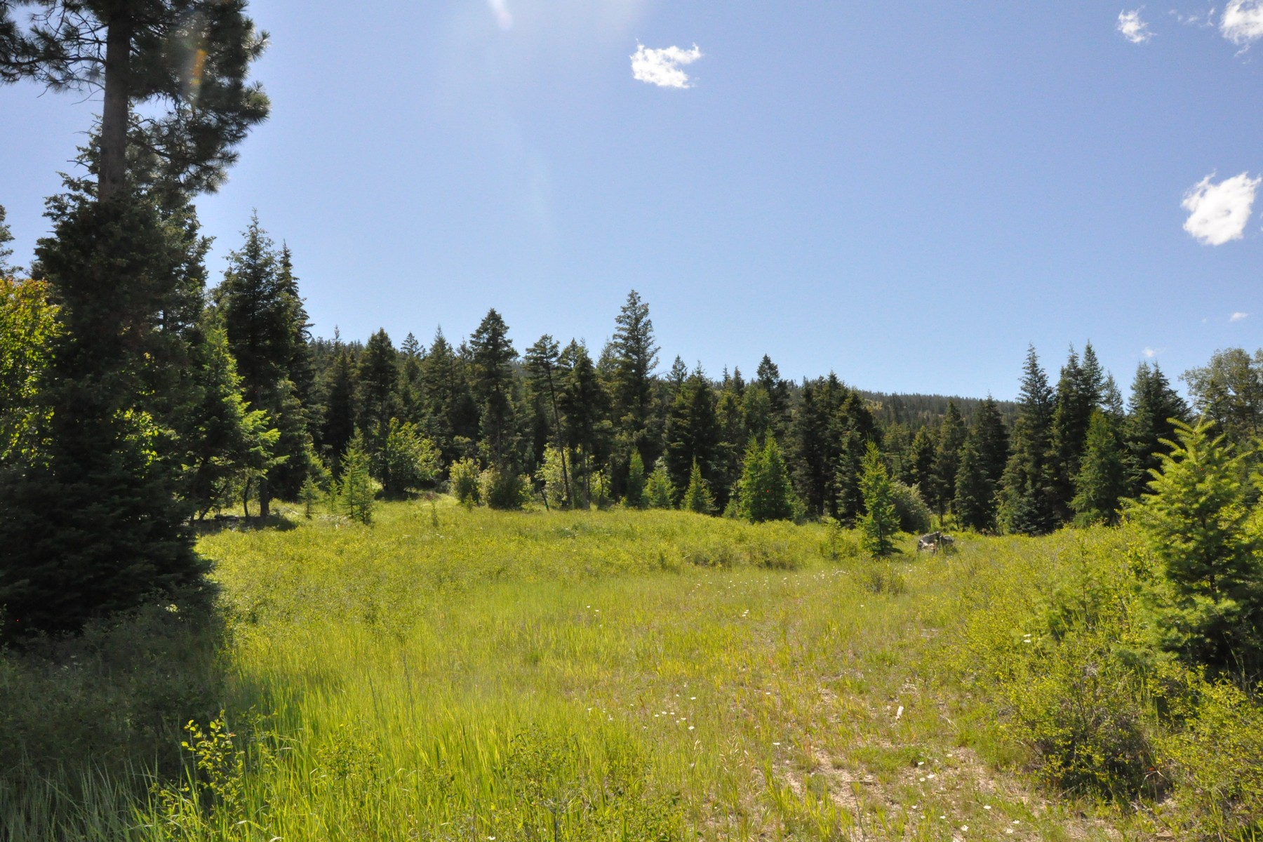 Land for Sale at Nhn Lower Lost Prairie Rd , Marion, MT 59925 Nhn Lower Lost Prairie Rd Marion, Montana 59925 United States