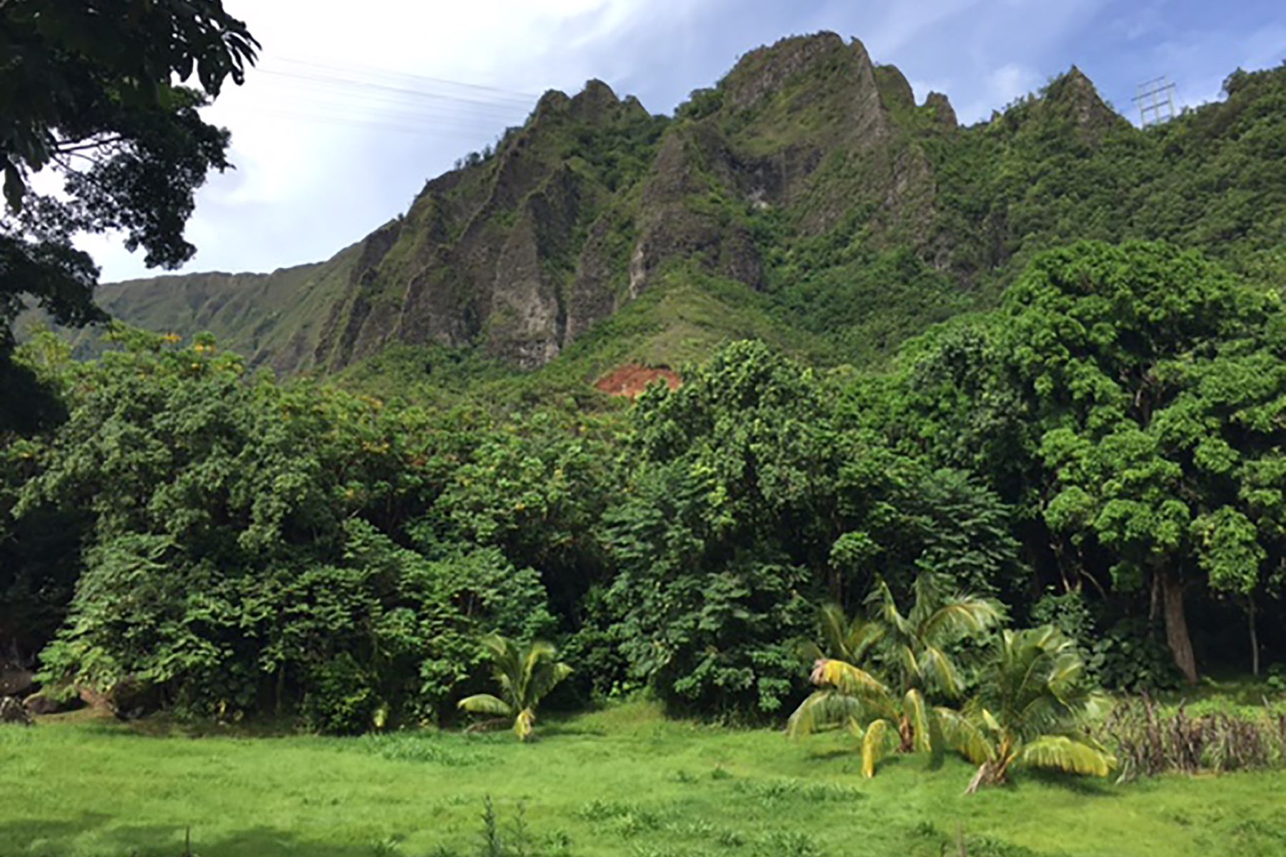 Land for Active at Lush Acreage in Haiku 46-403 Haiku Road Kaneohe, Hawaii 96744 United States