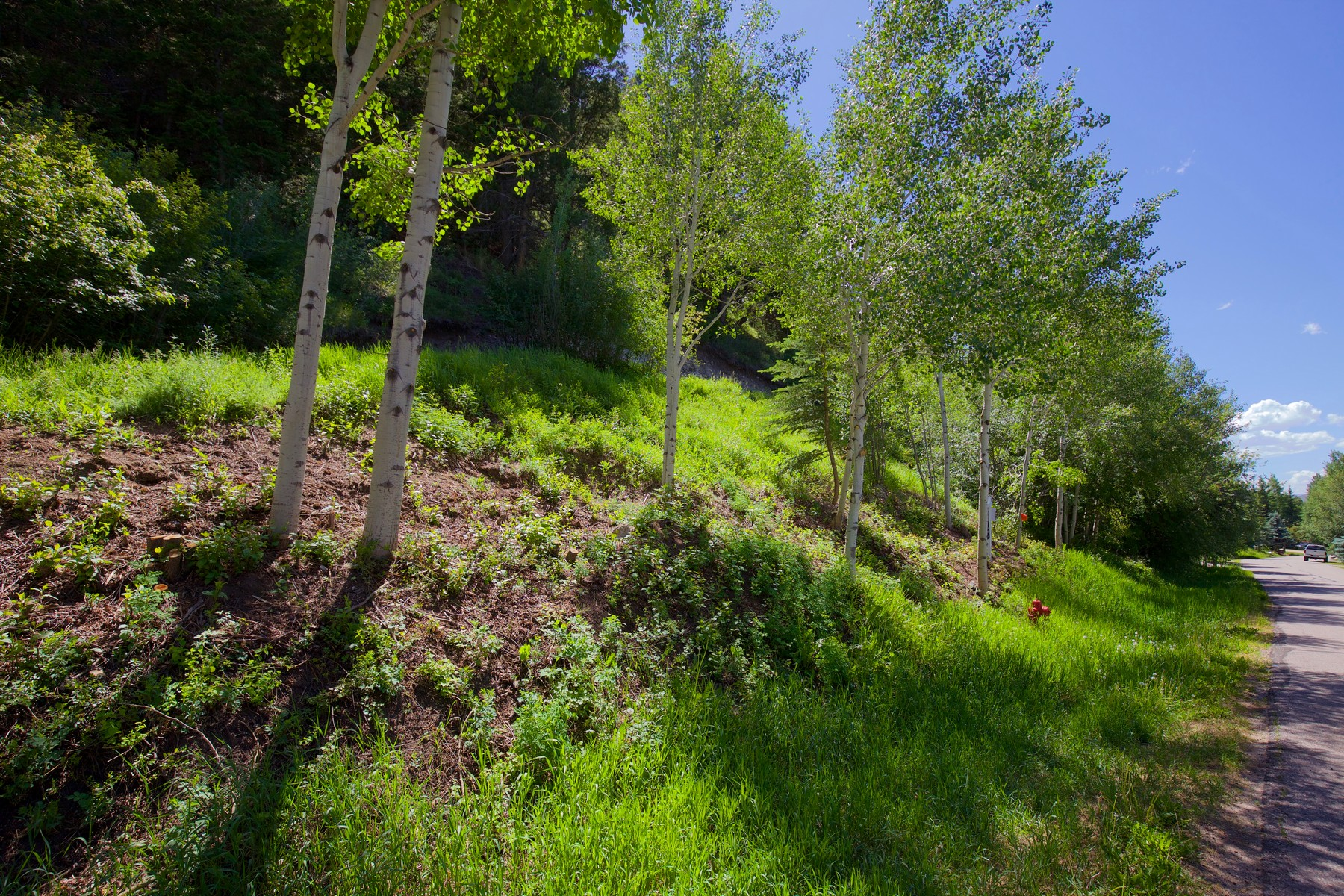 Additional photo for property listing at The last available vacant lot on one of EagleVail's best streets 239 Elk Lane Eagle Vail, Colorado 81620 United States