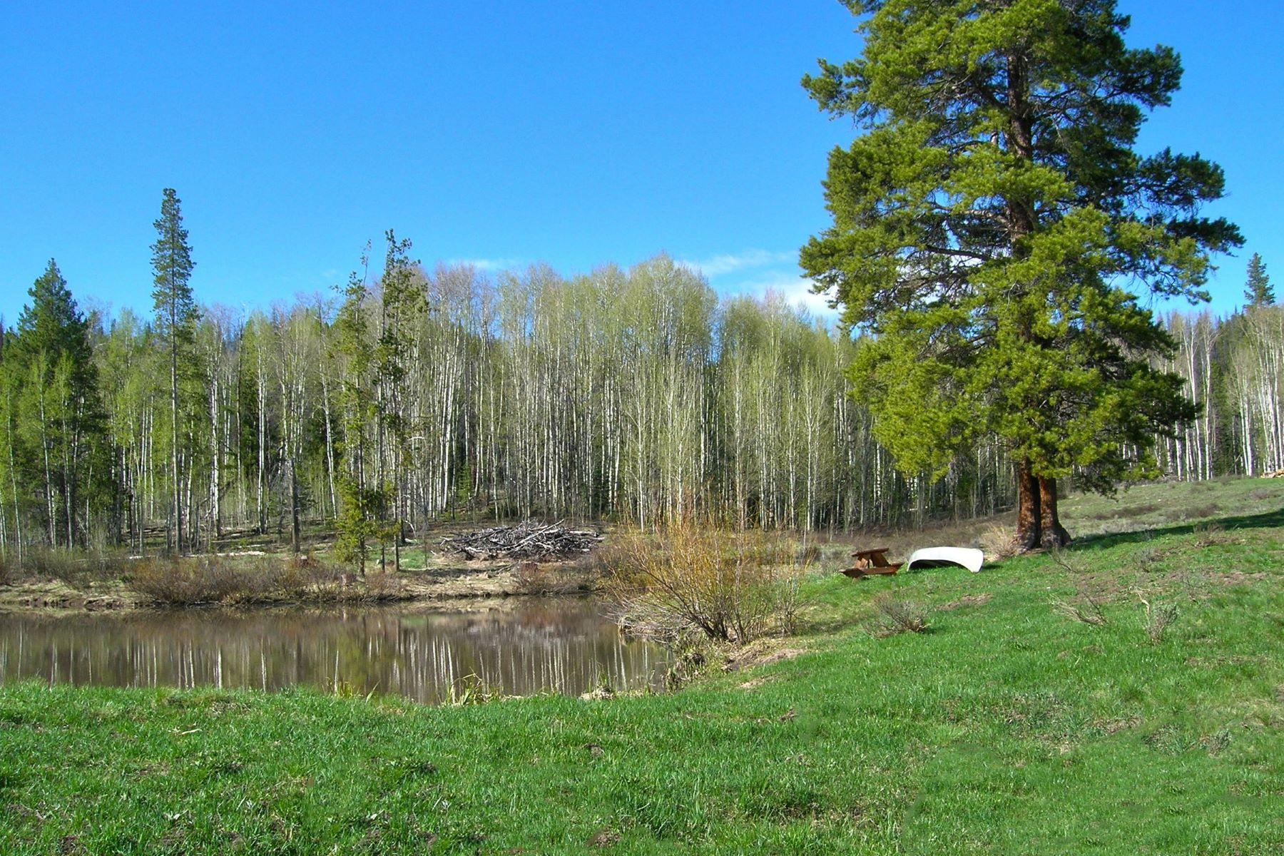 Земля для того Продажа на Bushy Creek at Stagecoach 21245 County Road 16, Oak Creek, Колорадо, 80467 Соединенные Штаты