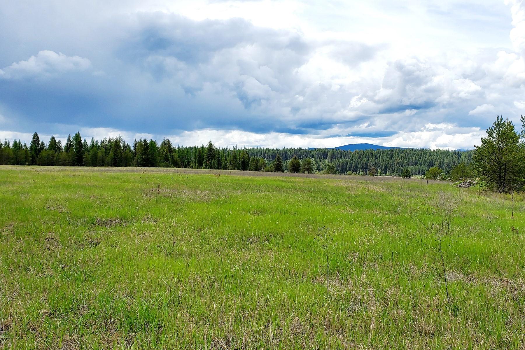 أراضي للـ Sale في Forest and Field NNA Serveny Ln, Priest River, Idaho 83856 United States