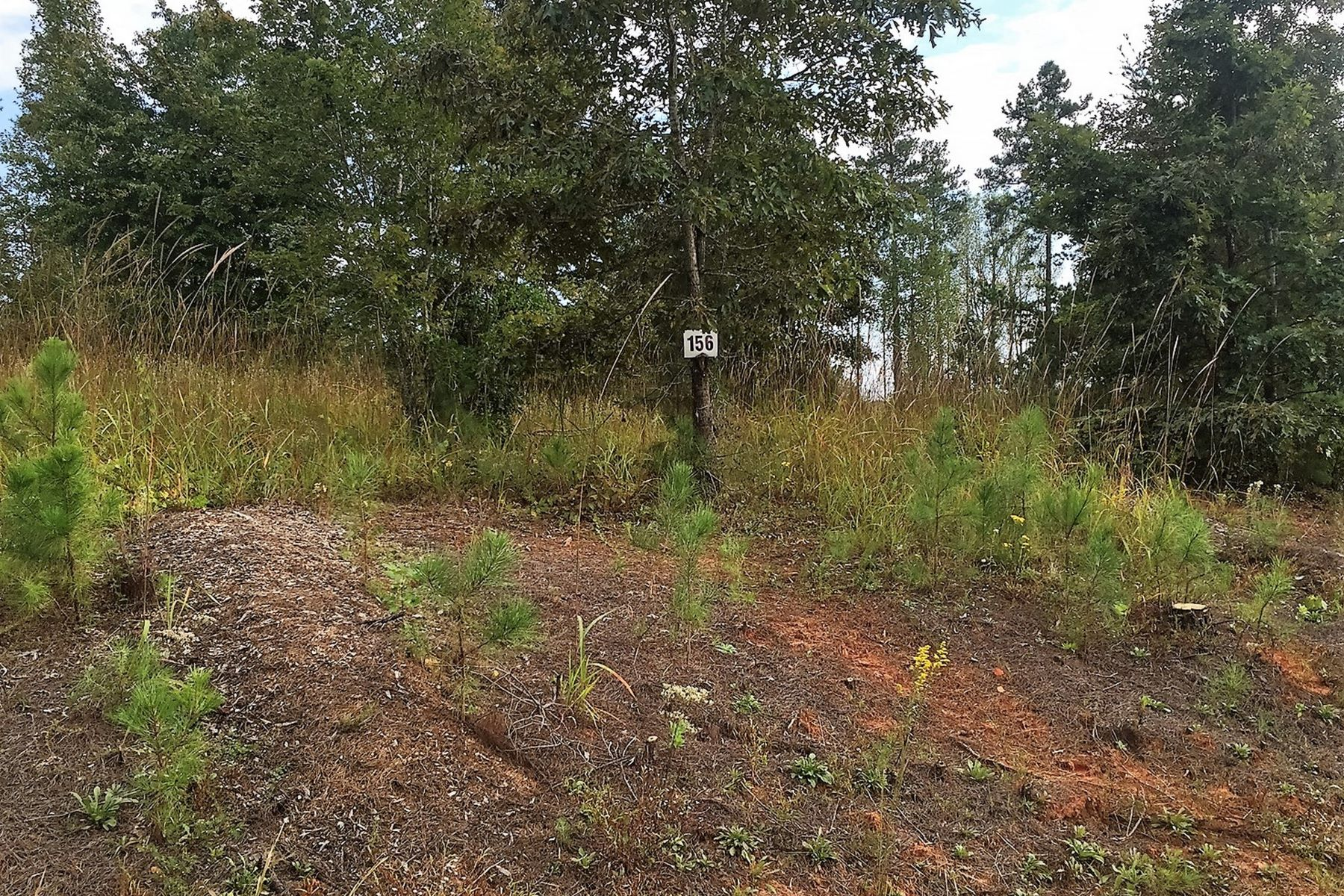 Land for Sale at 118 Mystic Ridge, Union Mills, NC 118 Mystic Ridge Lot #156 Union Mills, North Carolina 28167 United States