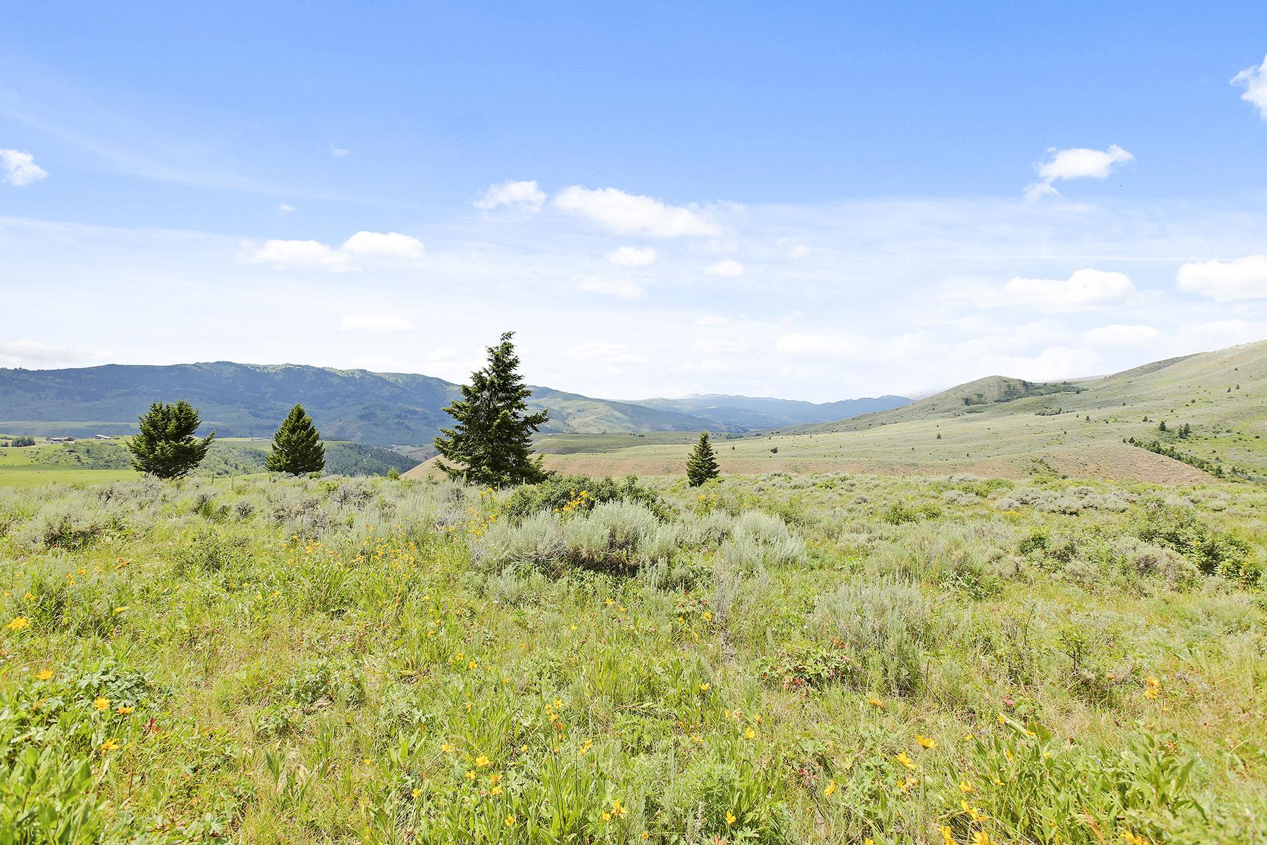 Terrain pour l Vente à Jackson Hole Ranch Property 3250 E Wildhorse, Jackson, Wyoming 83001 États-Unis