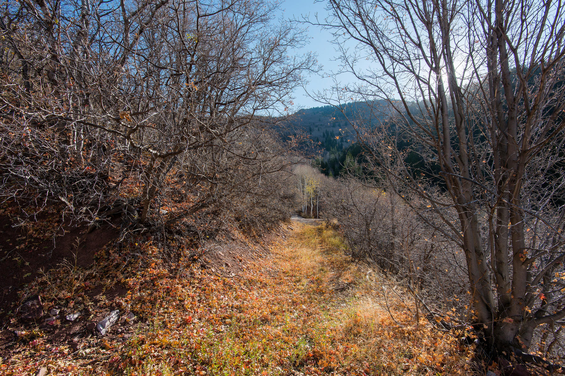 Additional photo for property listing at 2.18 Acres of Prime Land in Mt. Aire Canyon 7343 E Panorama Rd Salt Lake City, Utah 84109 United States