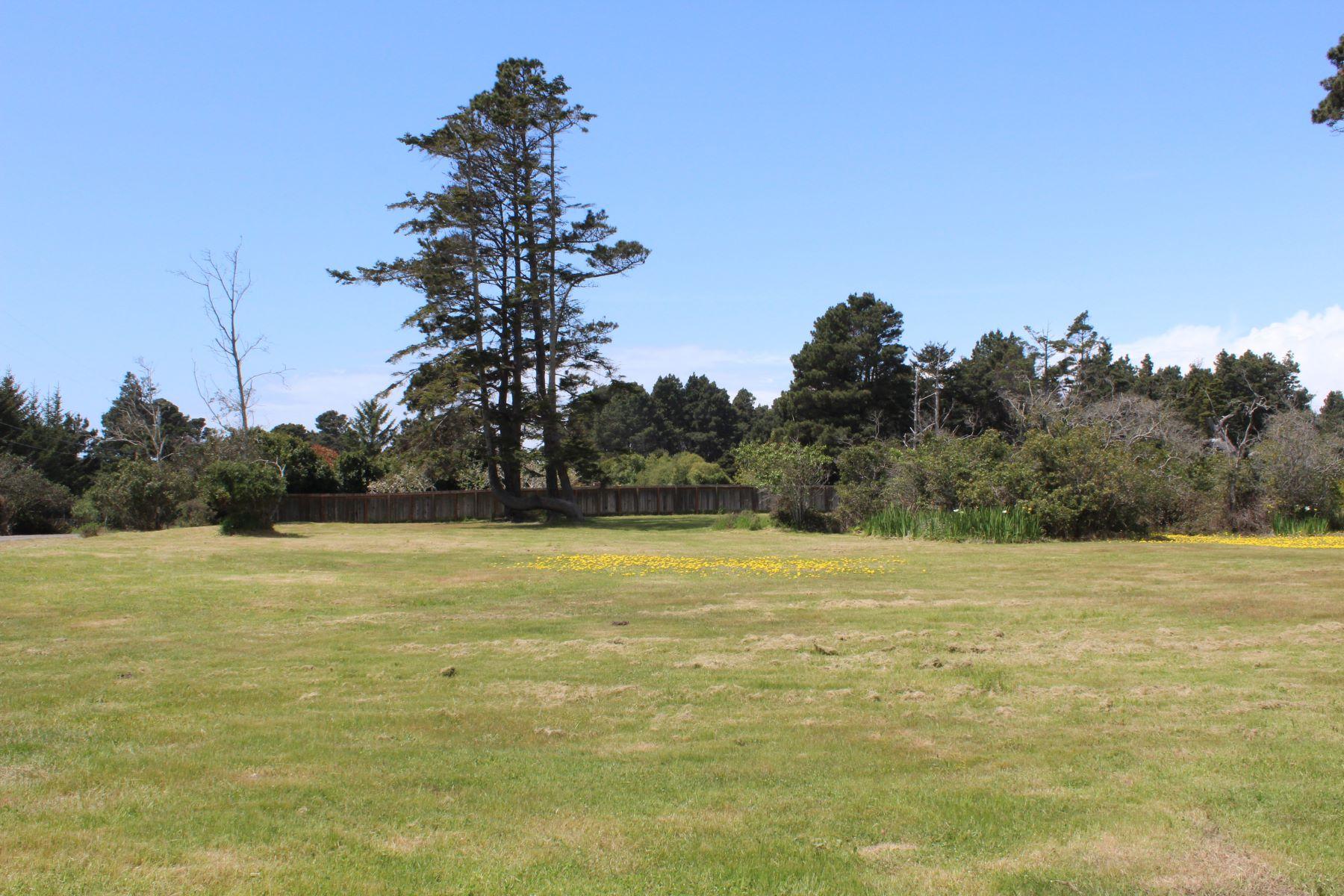 Additional photo for property listing at Coastal Gem 18312 N. Highway One Fort Bragg, California 95437 Estados Unidos