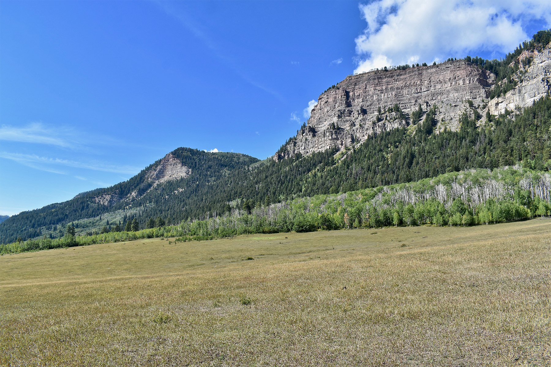 Land for Sale at Montagna I TBD N US Hwy 550 Montagna I Durango, Colorado 81301 United States