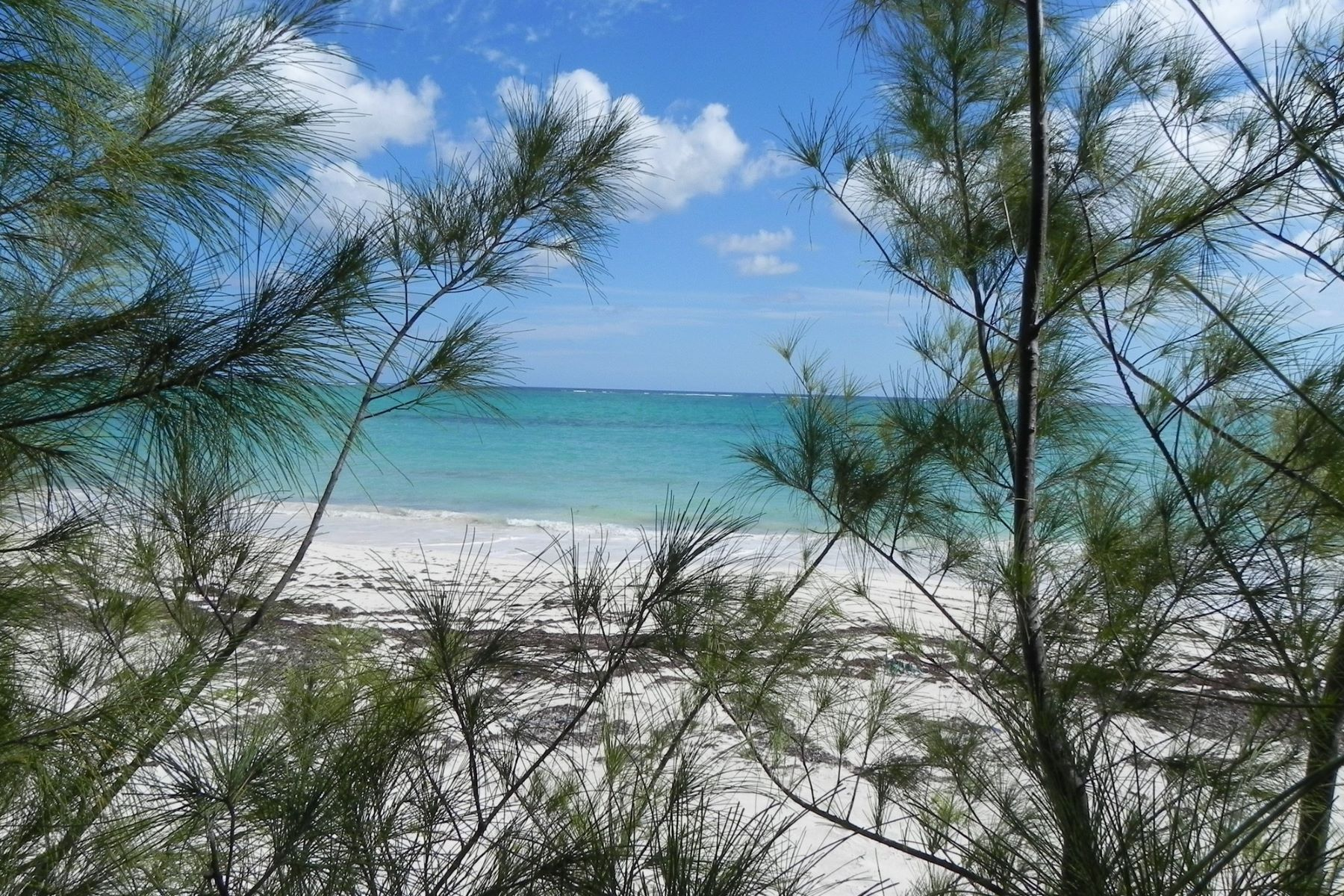 Additional photo for property listing at Lot 1 Bahama Palm Shores Bahama Palm Shores, Abaco Bahamas