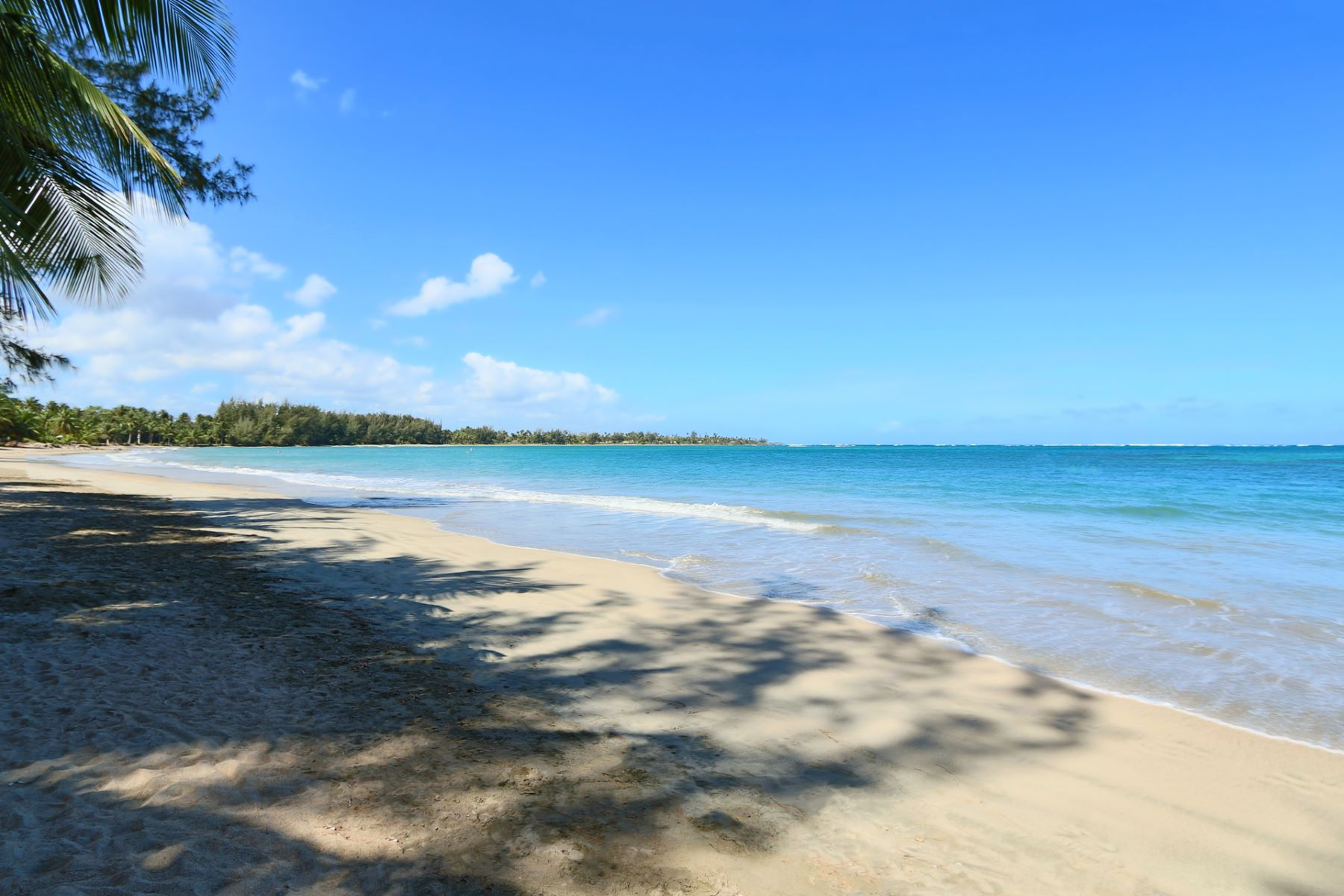 Additional photo for property listing at Beachfront Land at Sardinera, Dorado 52 Sardinera Beach Dorado Beach, Puerto Rico 00646 Пуэрто-Рико