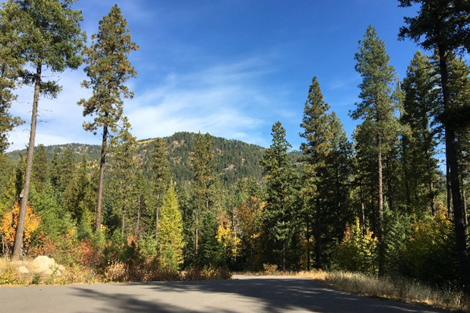 Land for Sale at Build your dream at Balsam Heights! 202 Balsam Dr Sandpoint, Idaho 83864 United States