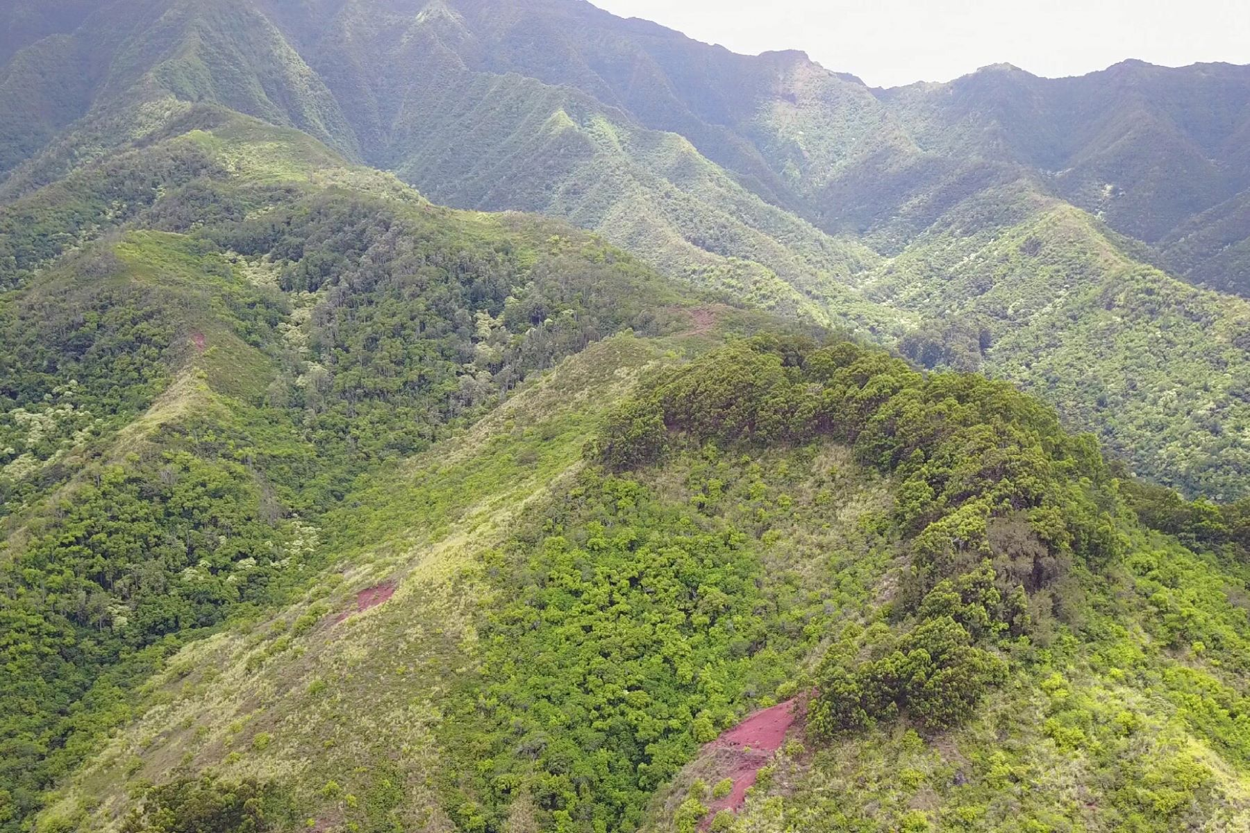Land for Sale at Ample Acreage 67-290 Farrington Hwy #5 Waialua, Hawaii 96791 United States